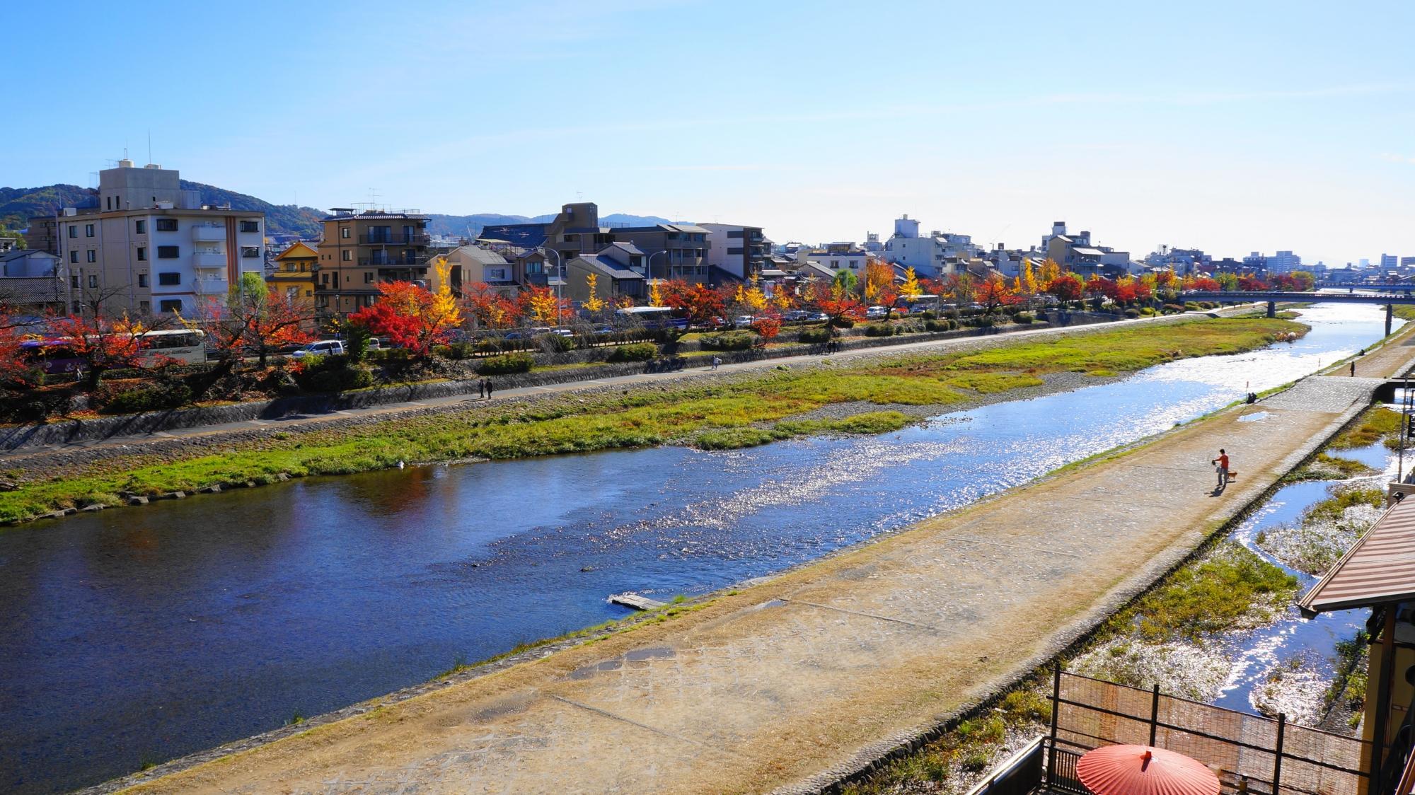 四条から五条の紅葉の時期の長閑な鴨川