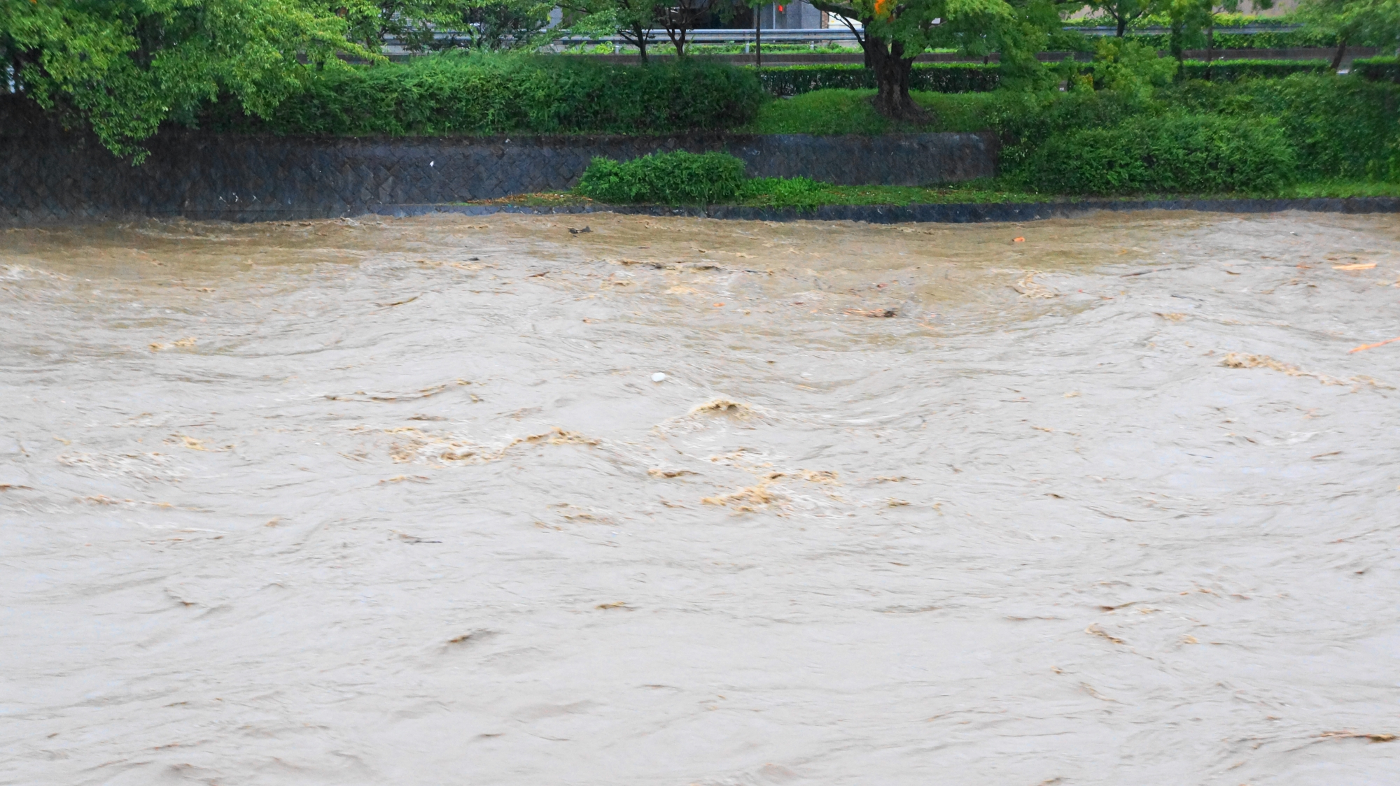 水位がギリギリのところまで来て今にも氾濫しそうな鴨川