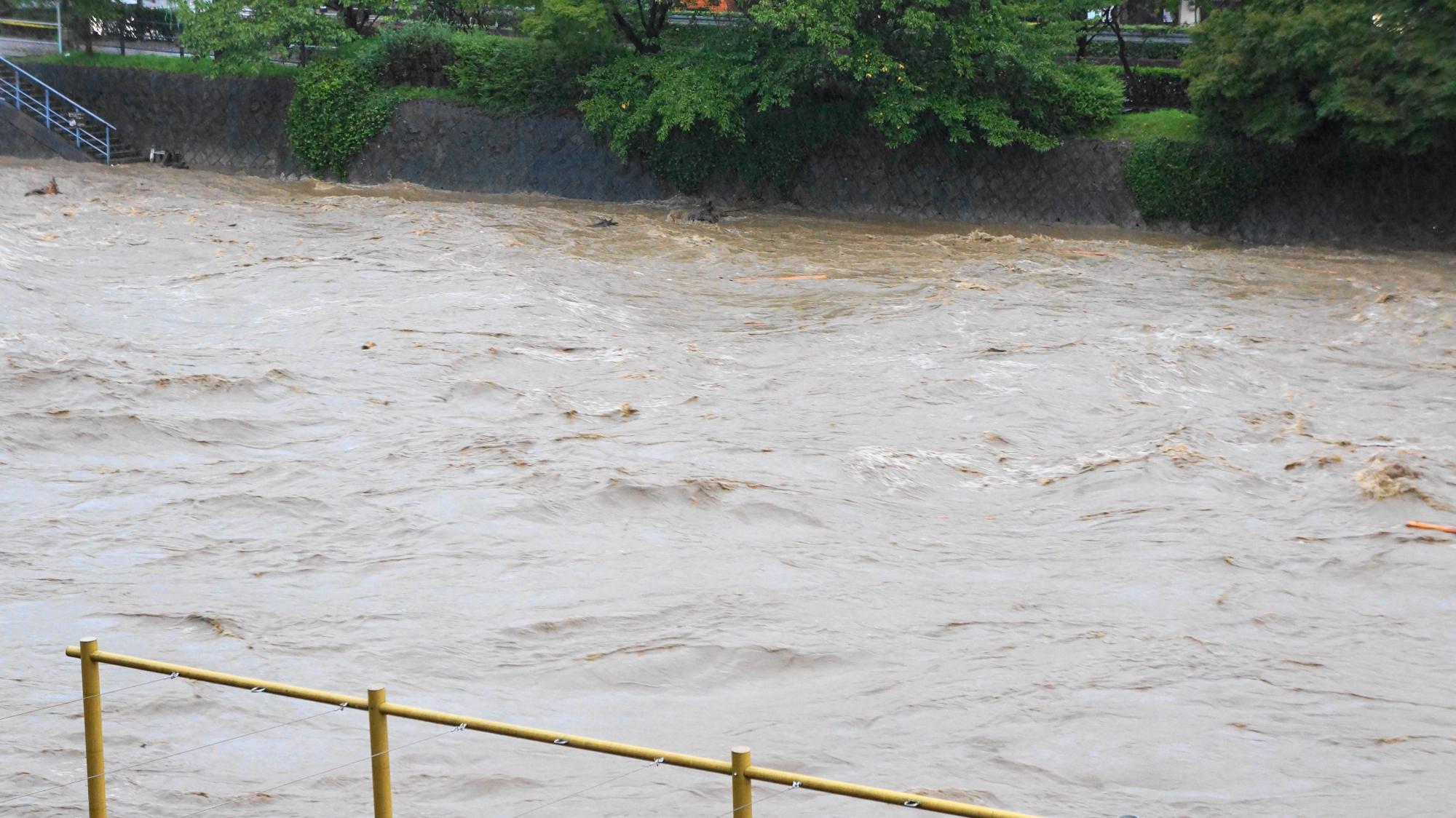 流れも激しく危険な音も凄い鴨川