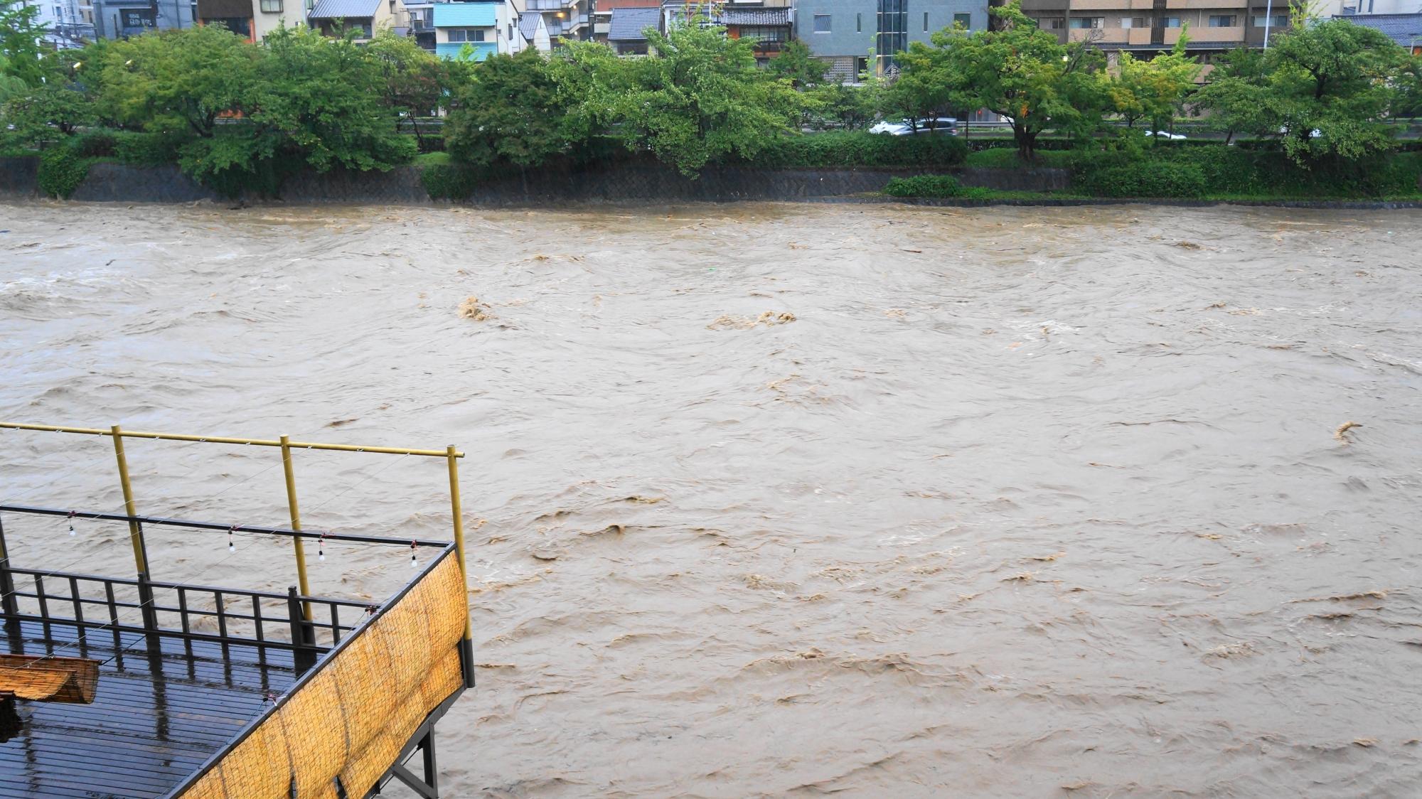 物凄い量の茶色い水が流れて行く鴨川