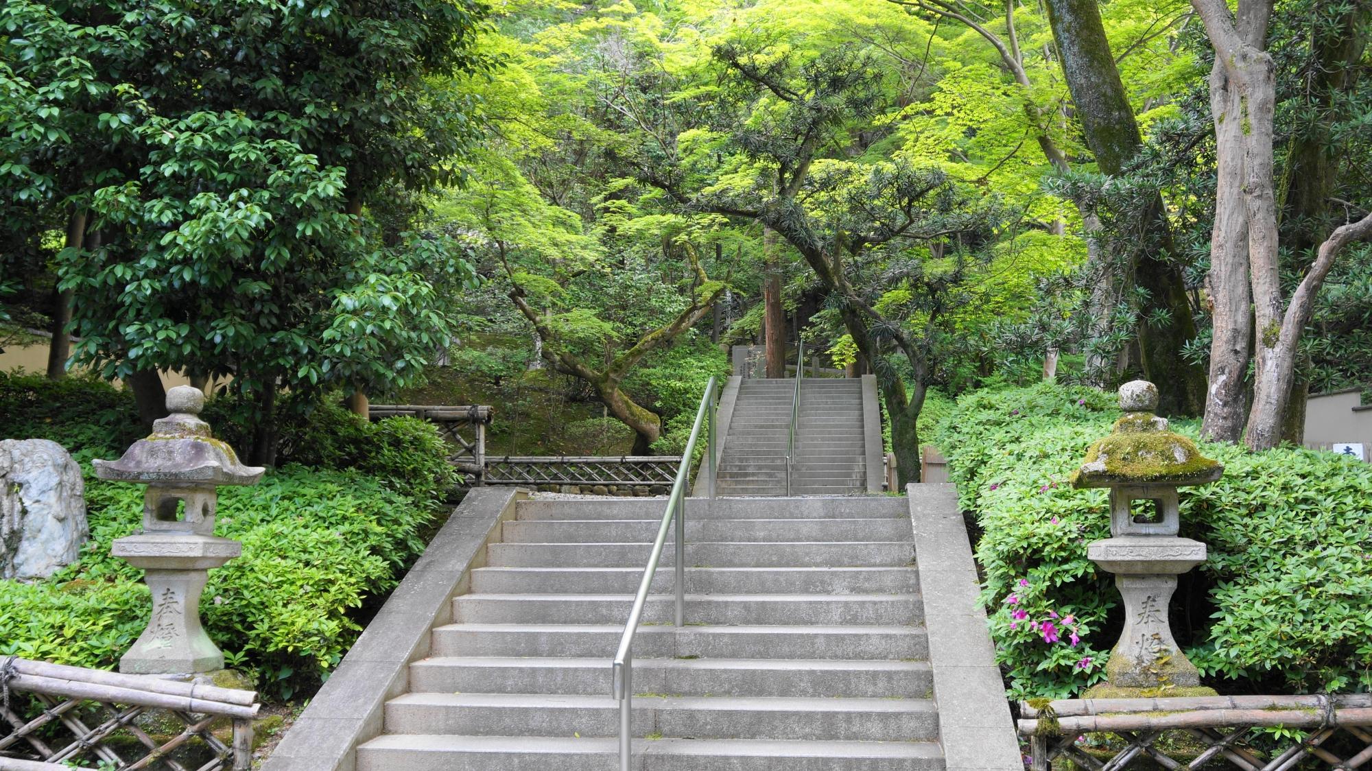 今熊野観音寺の石段