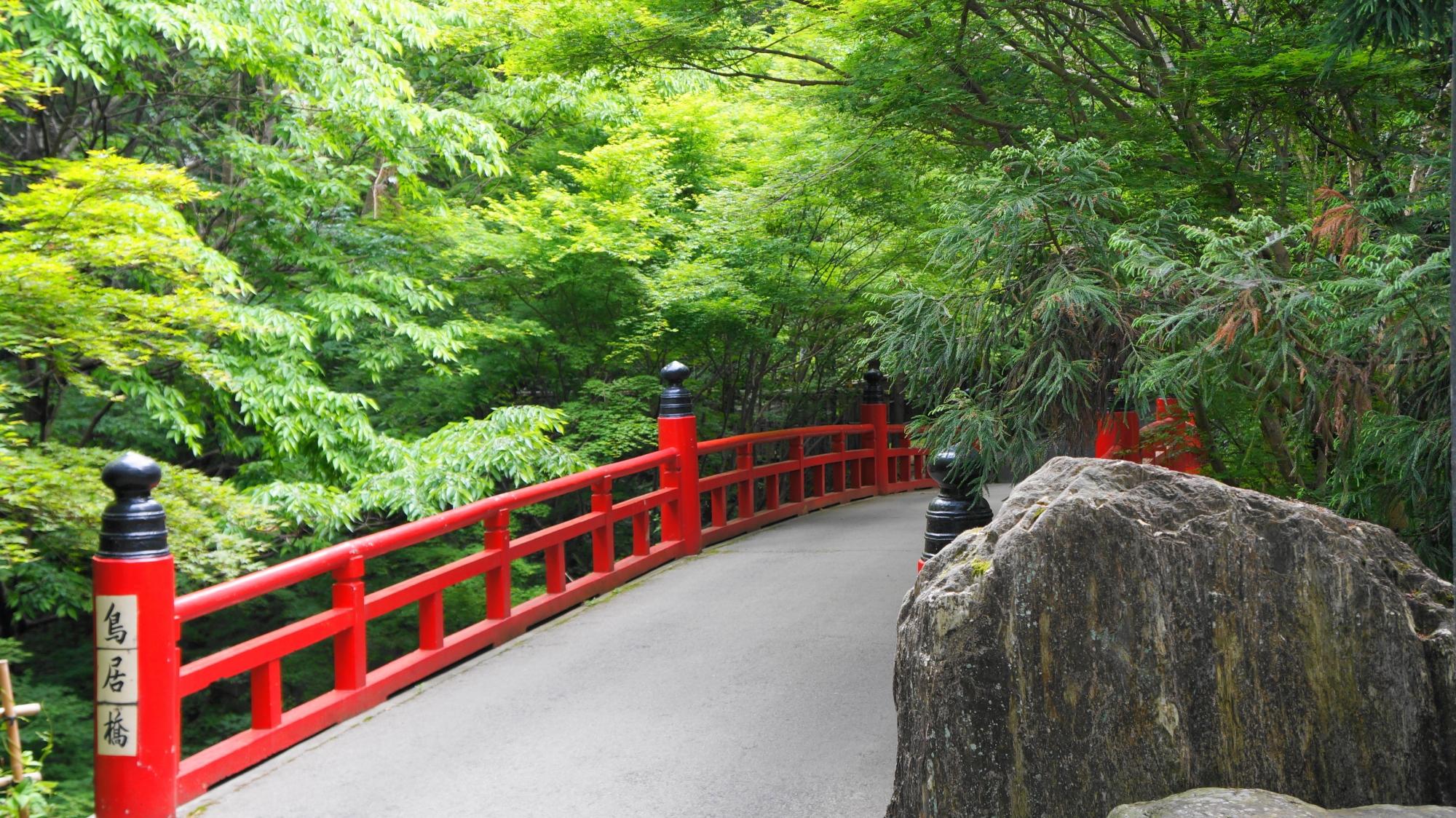 今熊野観音寺の赤い鳥居橋と綺麗な新緑