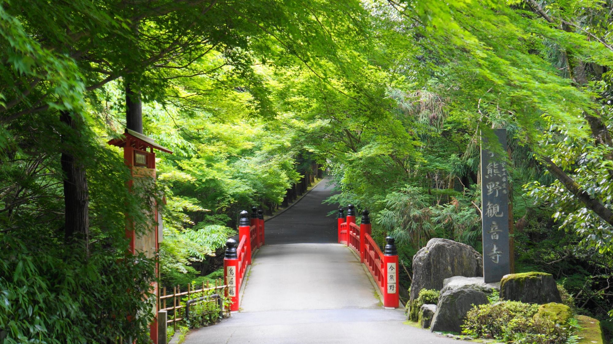 今熊野観音寺の鳥居橋と美しい新緑