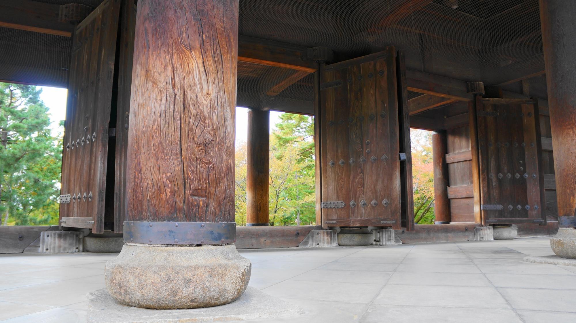 南禅寺の三門と美しい青もみじ