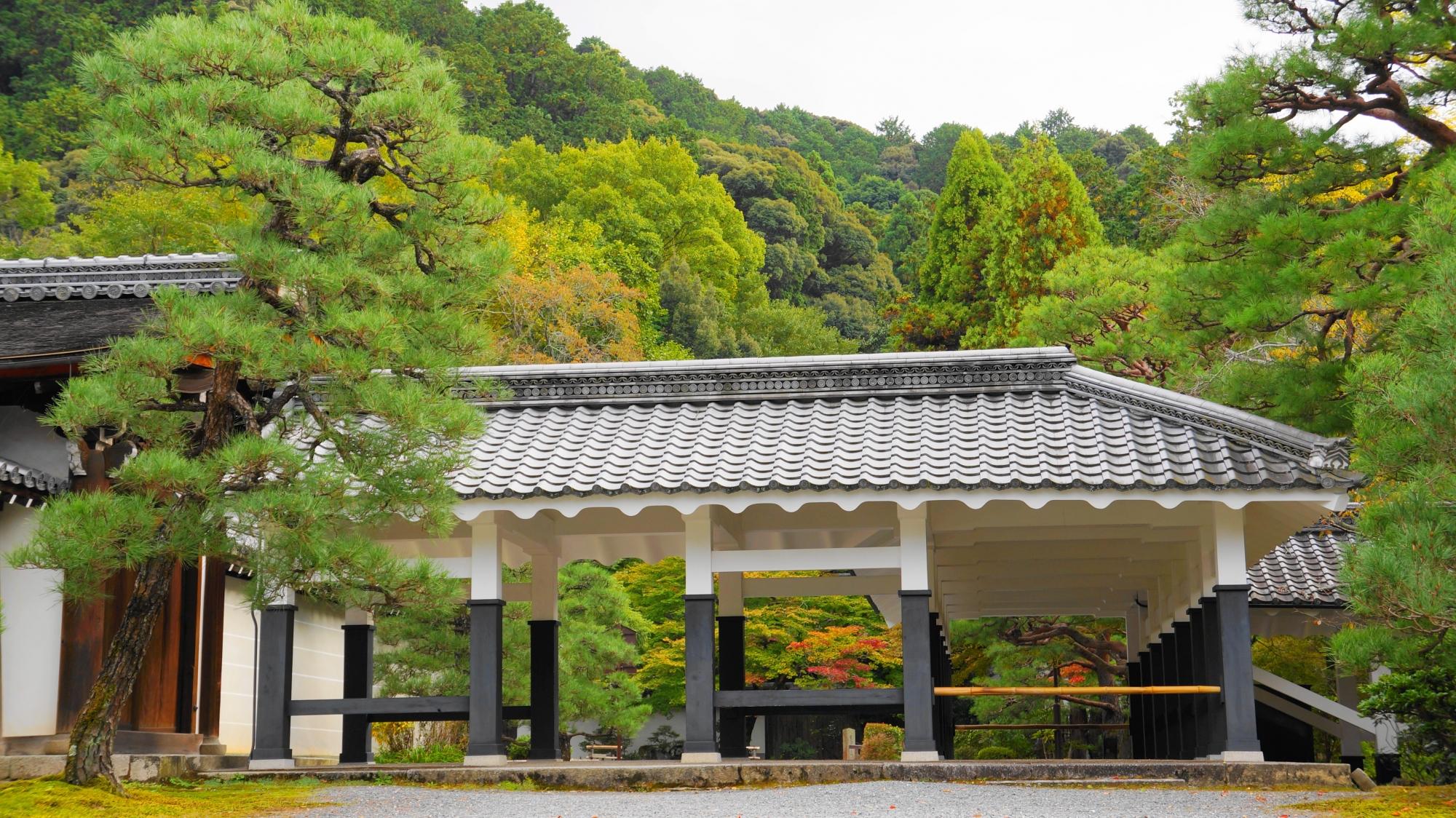 南禅寺の法堂~方丈の回廊と青もみじ