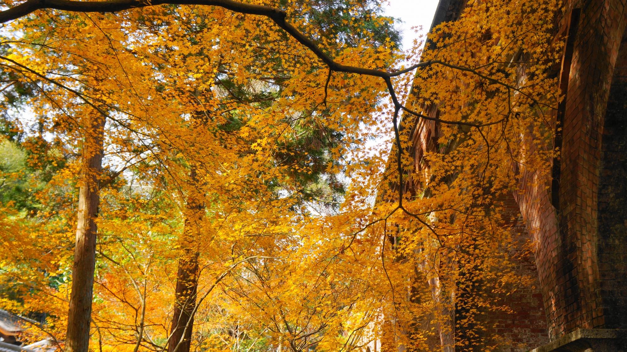 南禅寺の水路閣と華やかで淡い紅葉
