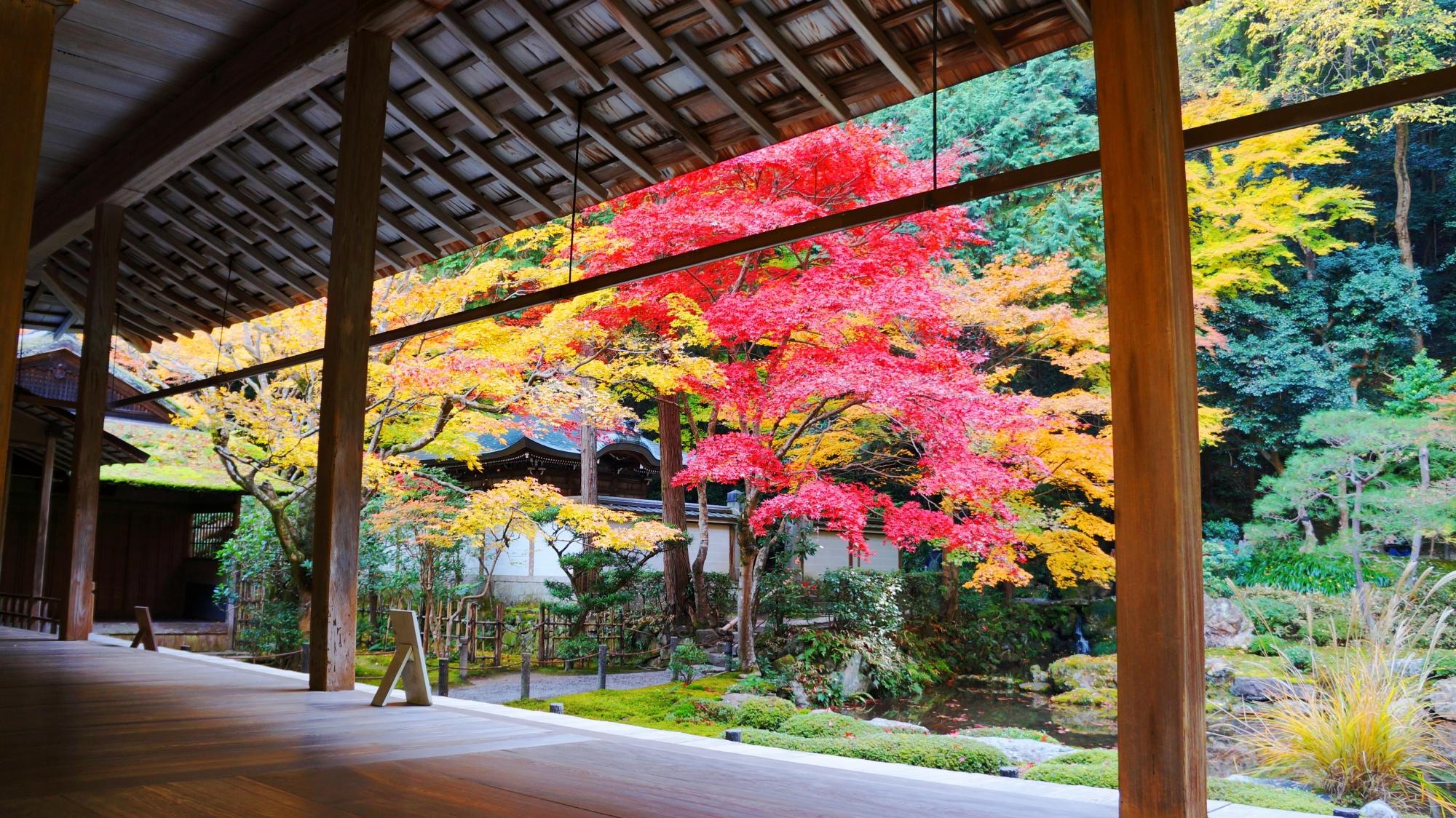 南禅寺別院の南禅院の紅葉