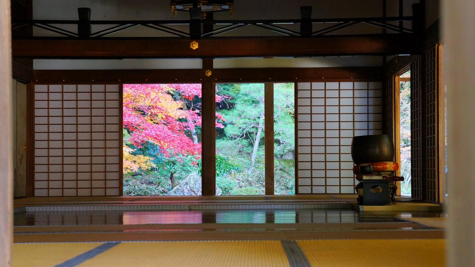 南禅院の方丈越しに眺める秋色の庭園