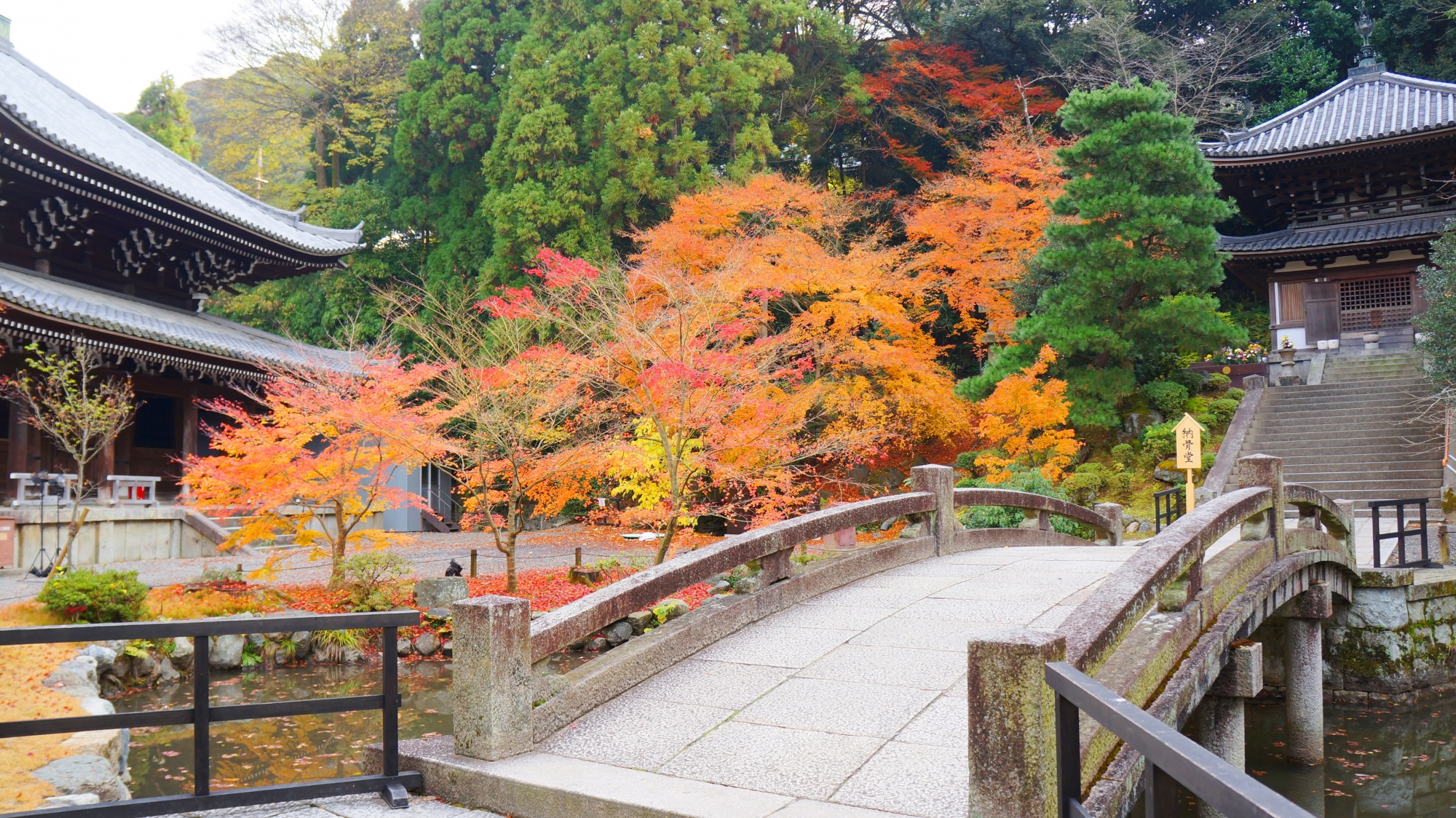 晩秋の知恩院の納骨堂付近の紅葉