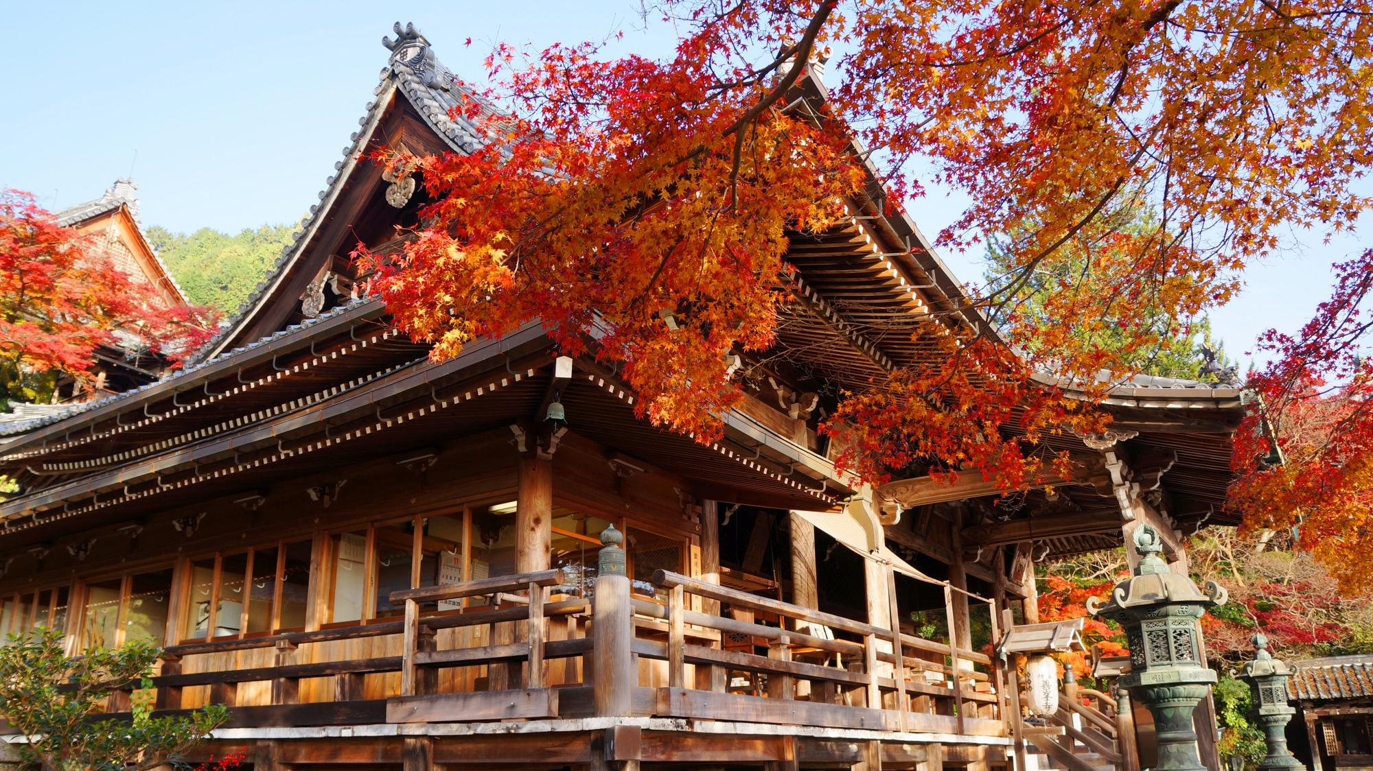 善峯寺の観音堂と紅葉