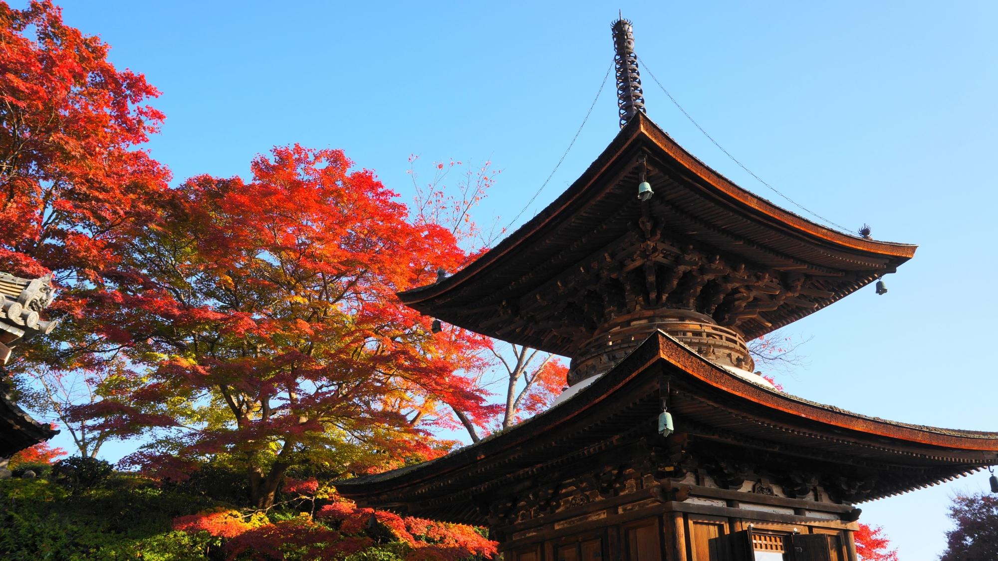 善峯寺の多宝塔と紅葉