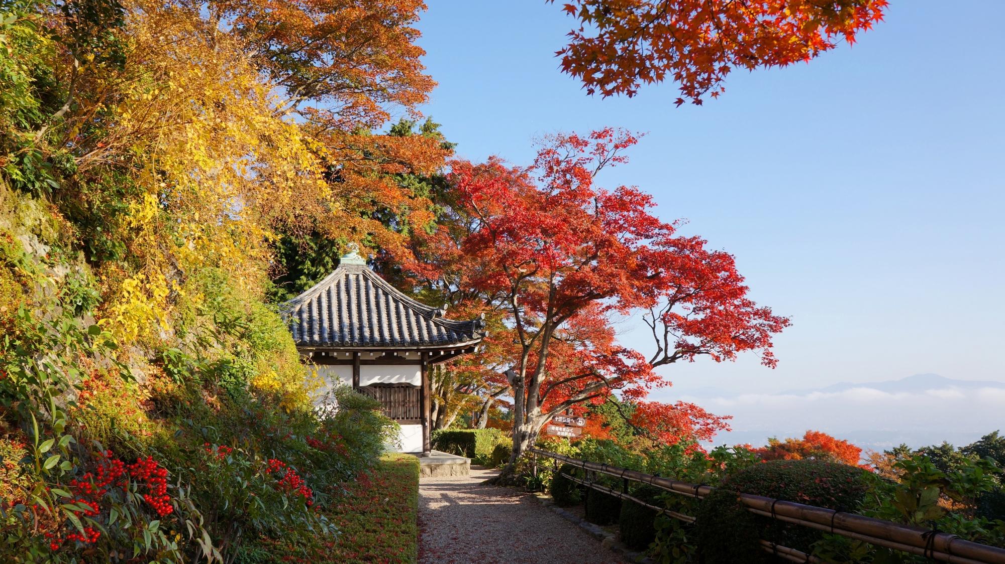 善峯寺の開山堂の紅葉