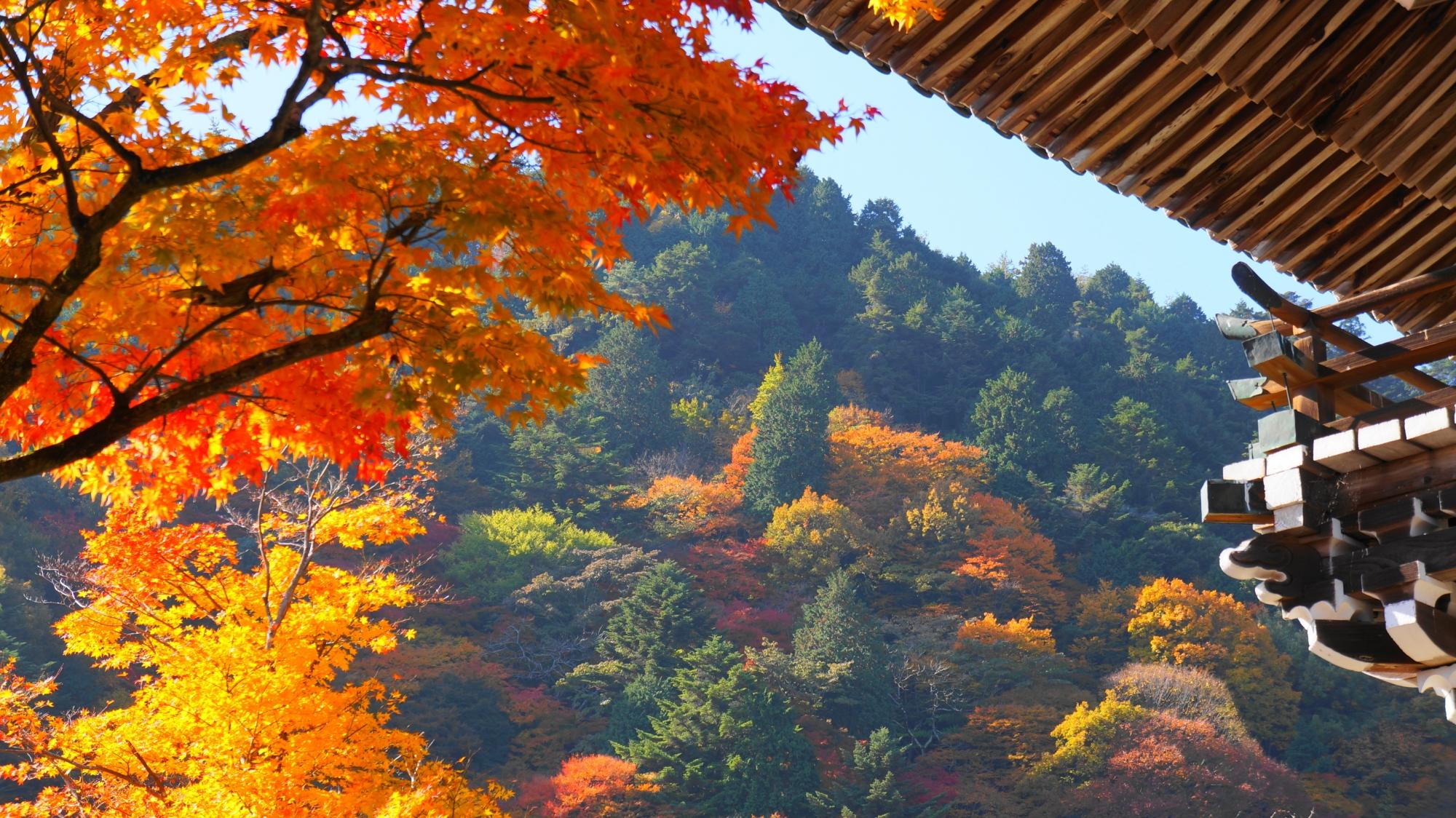 山門と色づく山