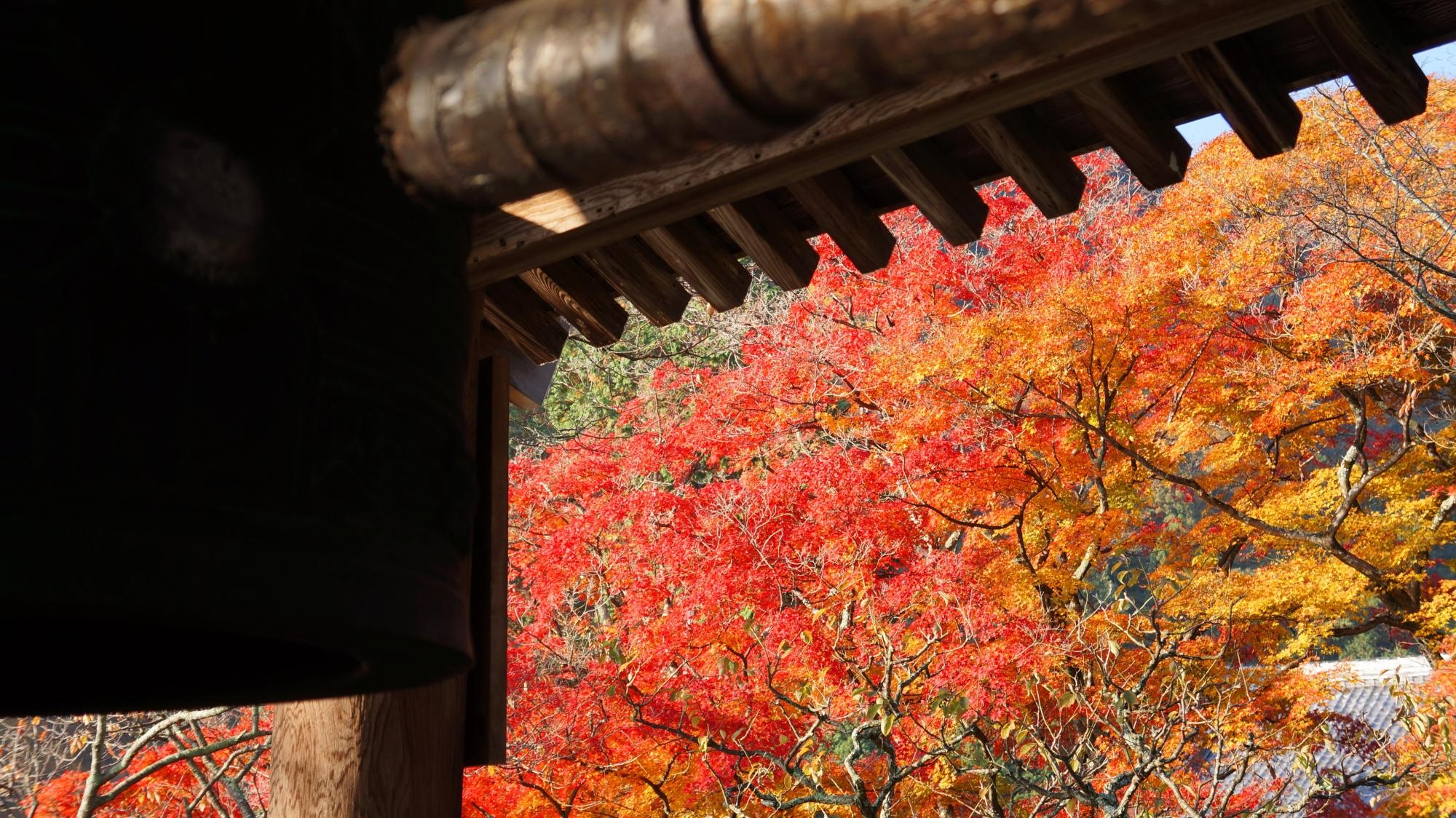 善峯寺の溢れる色とりどりの紅葉