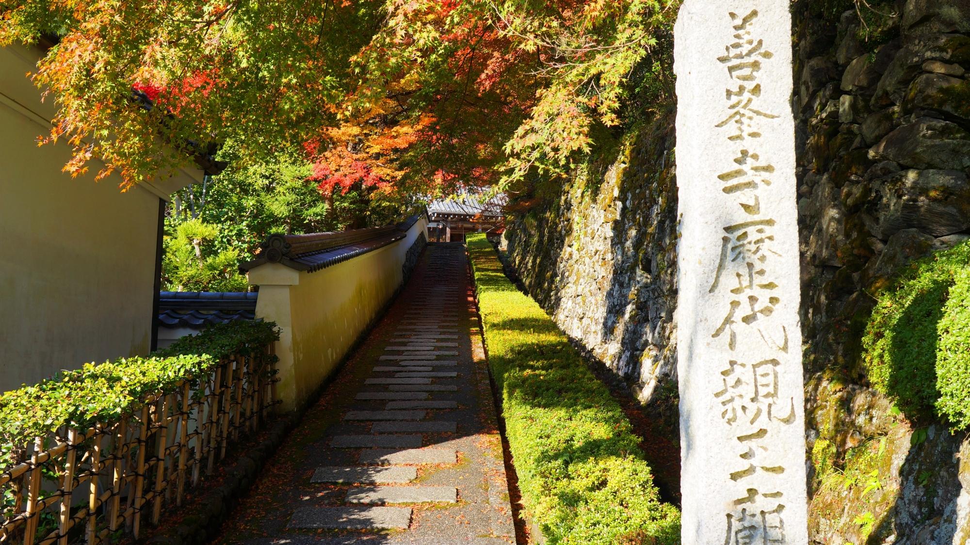 善峯寺の阿弥陀堂前石段の紅葉