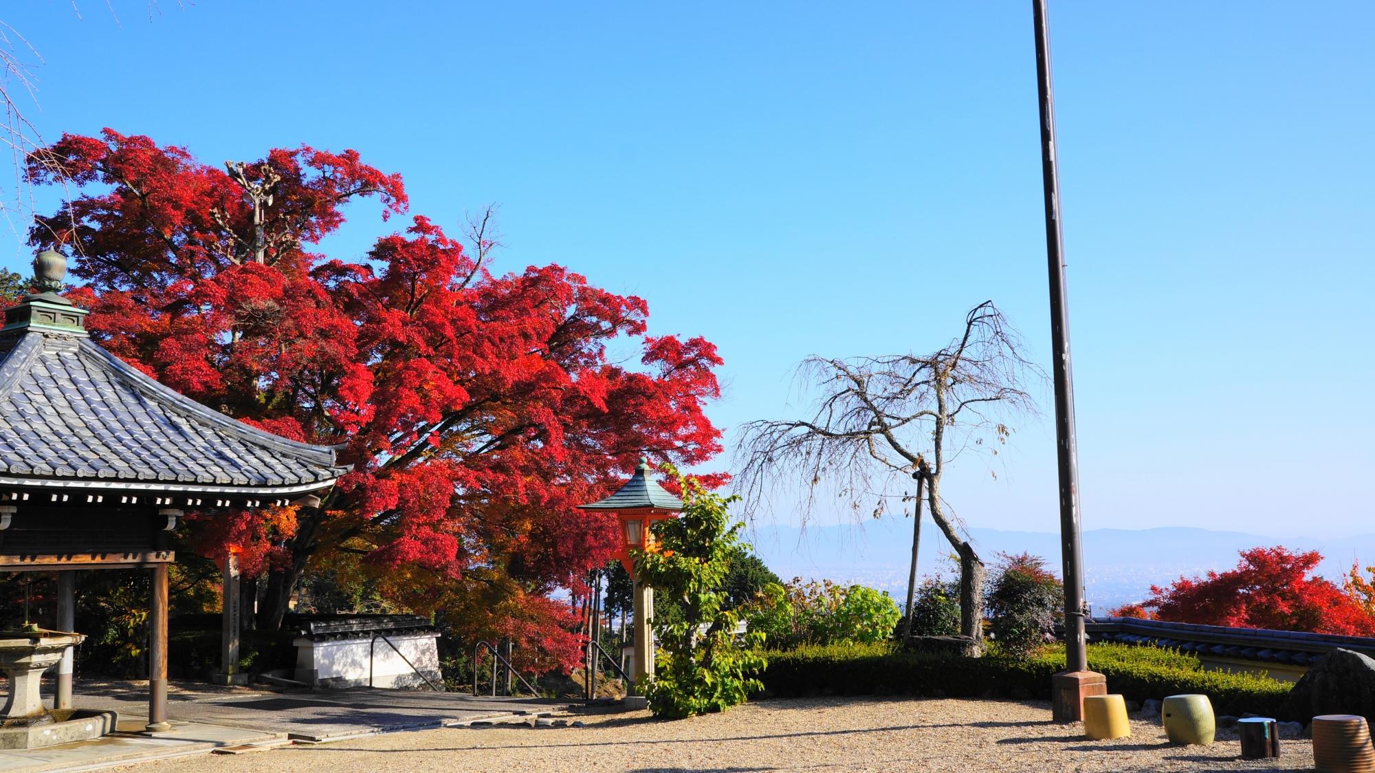 山寺の美しすぎる紅葉 秋の善峯寺