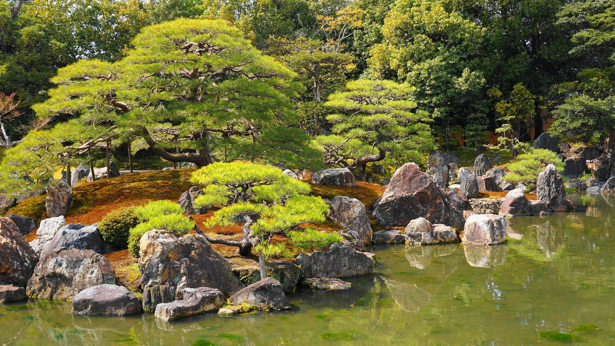 緑も豊富に取り入れられた二条城の庭園