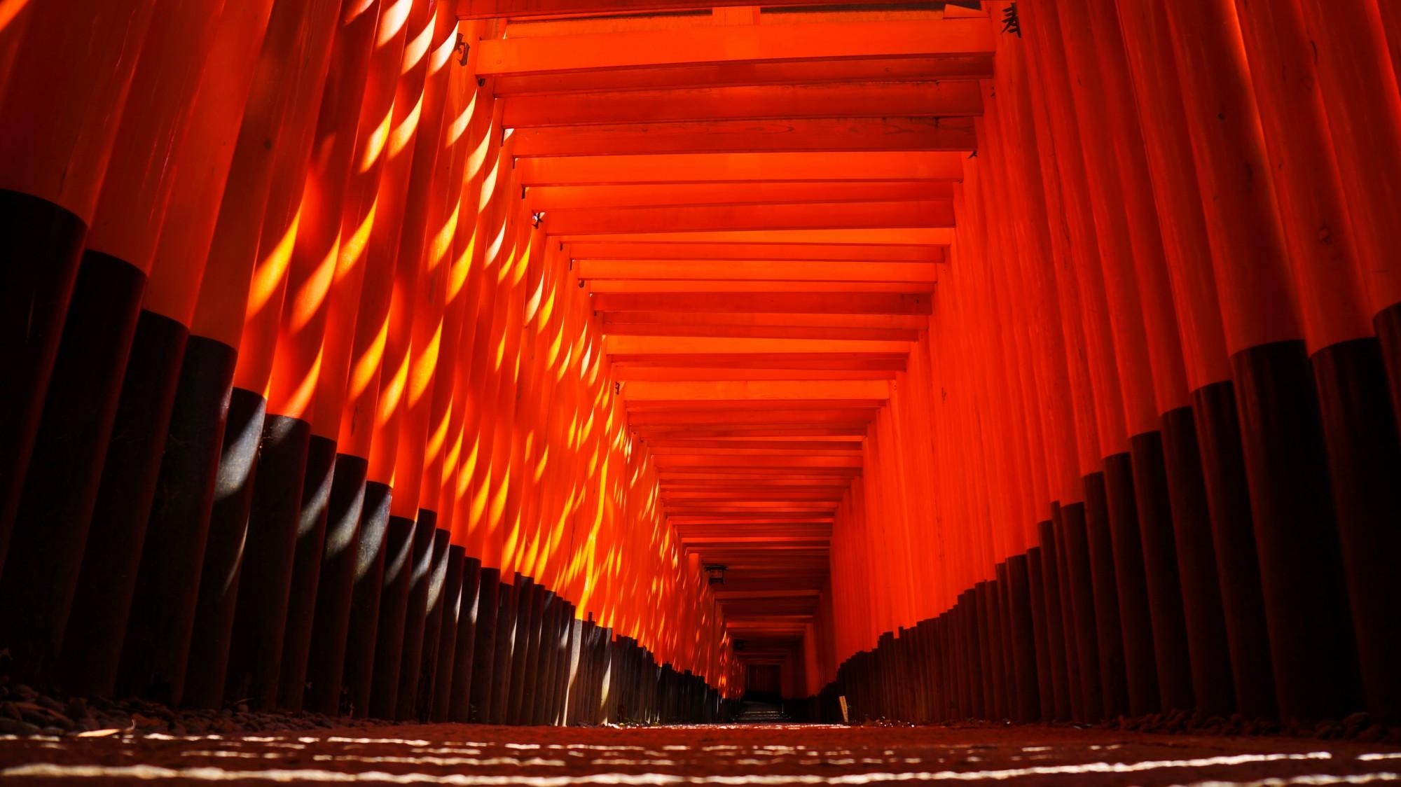 伏見稲荷大社の真っ赤な圧巻の千本鳥居