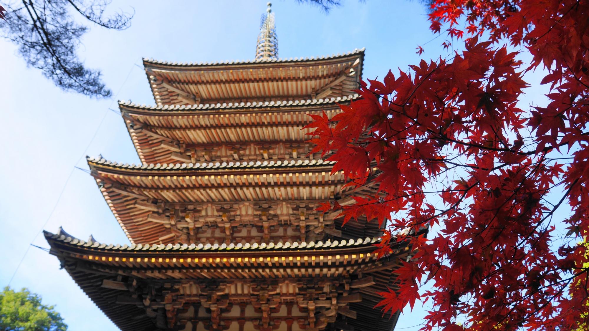 醍醐寺の五重塔と紅葉の絵になる秋の情景