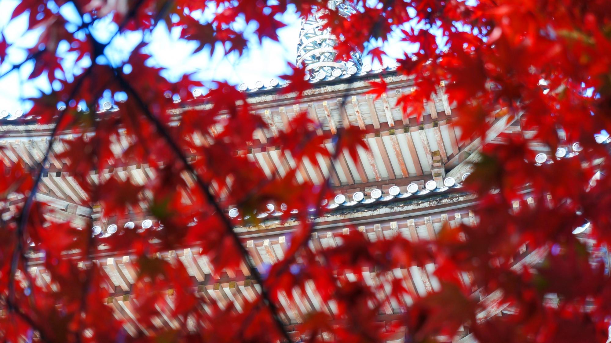 溢れる紅葉の間から見える秋の五重塔
