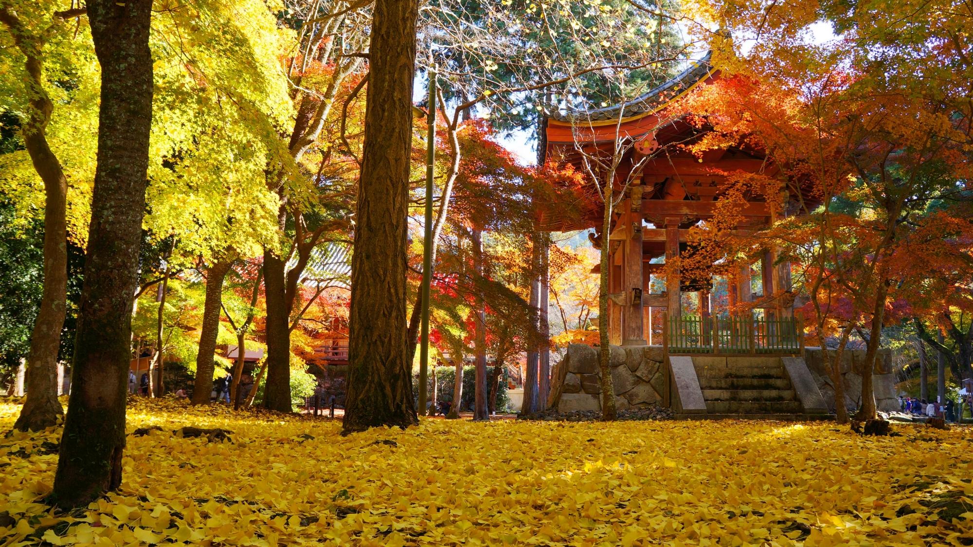 醍醐寺の鐘楼と銀杏の絨毯