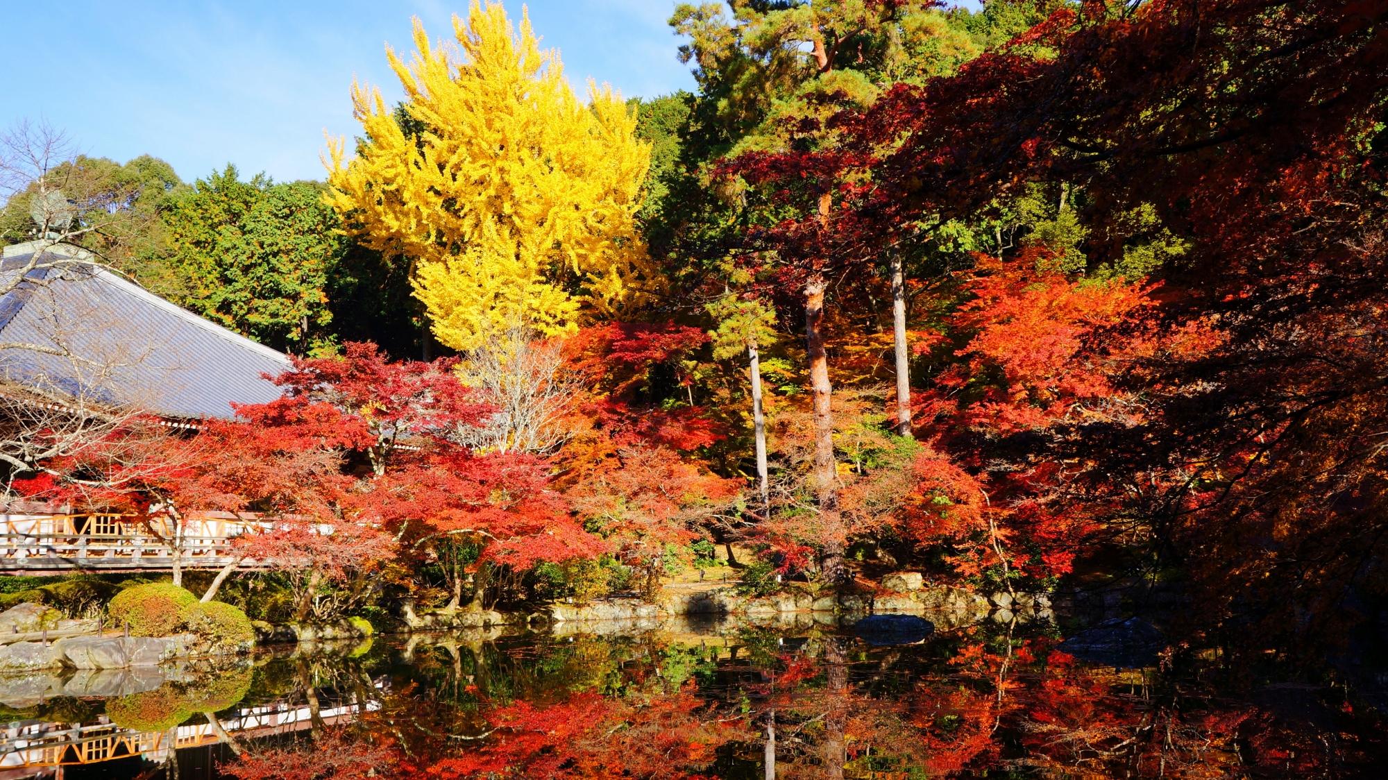 醍醐寺の観音堂と多彩な紅葉