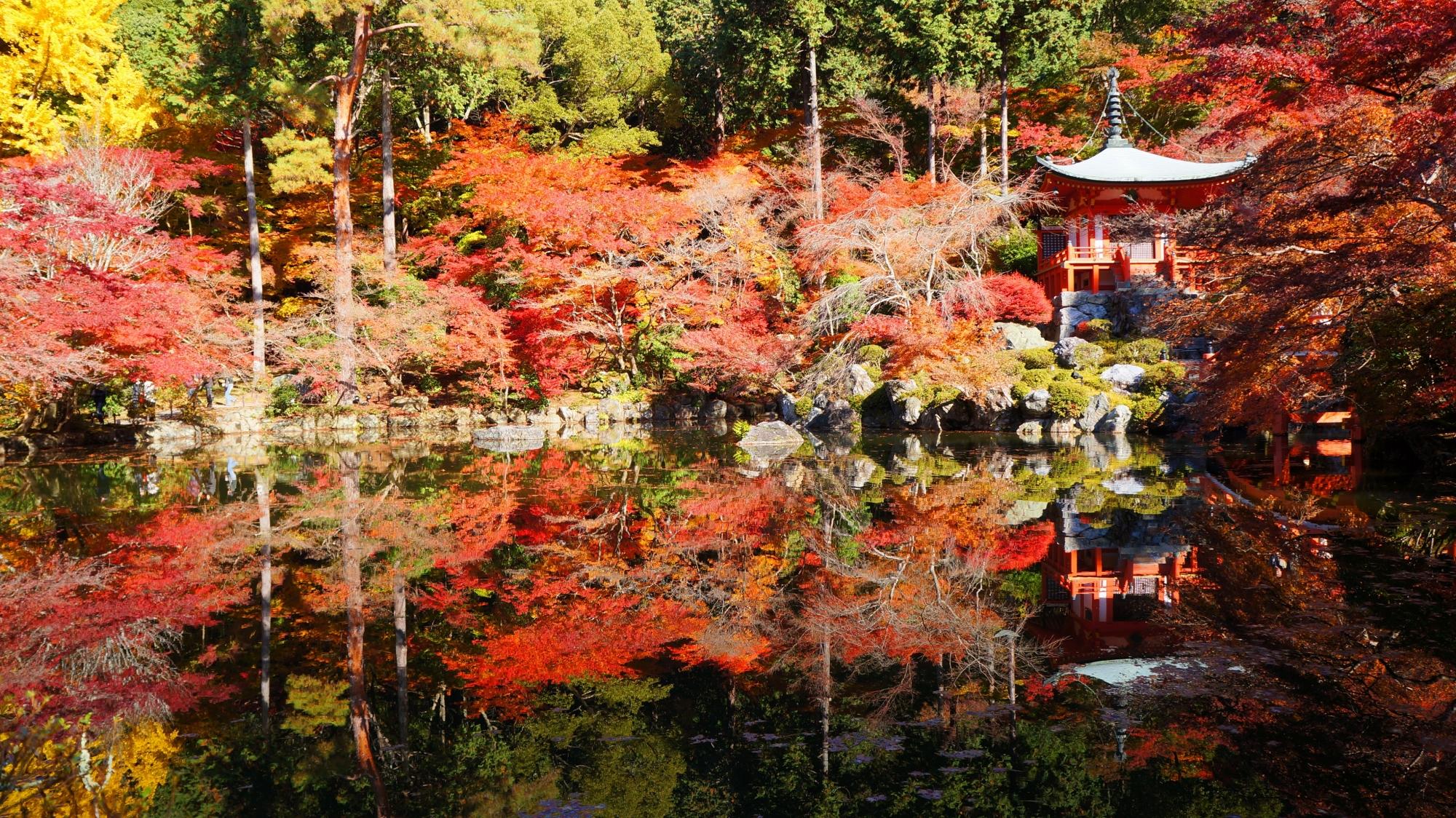 醍醐寺の見事な紅葉と水鏡や秋色の情景