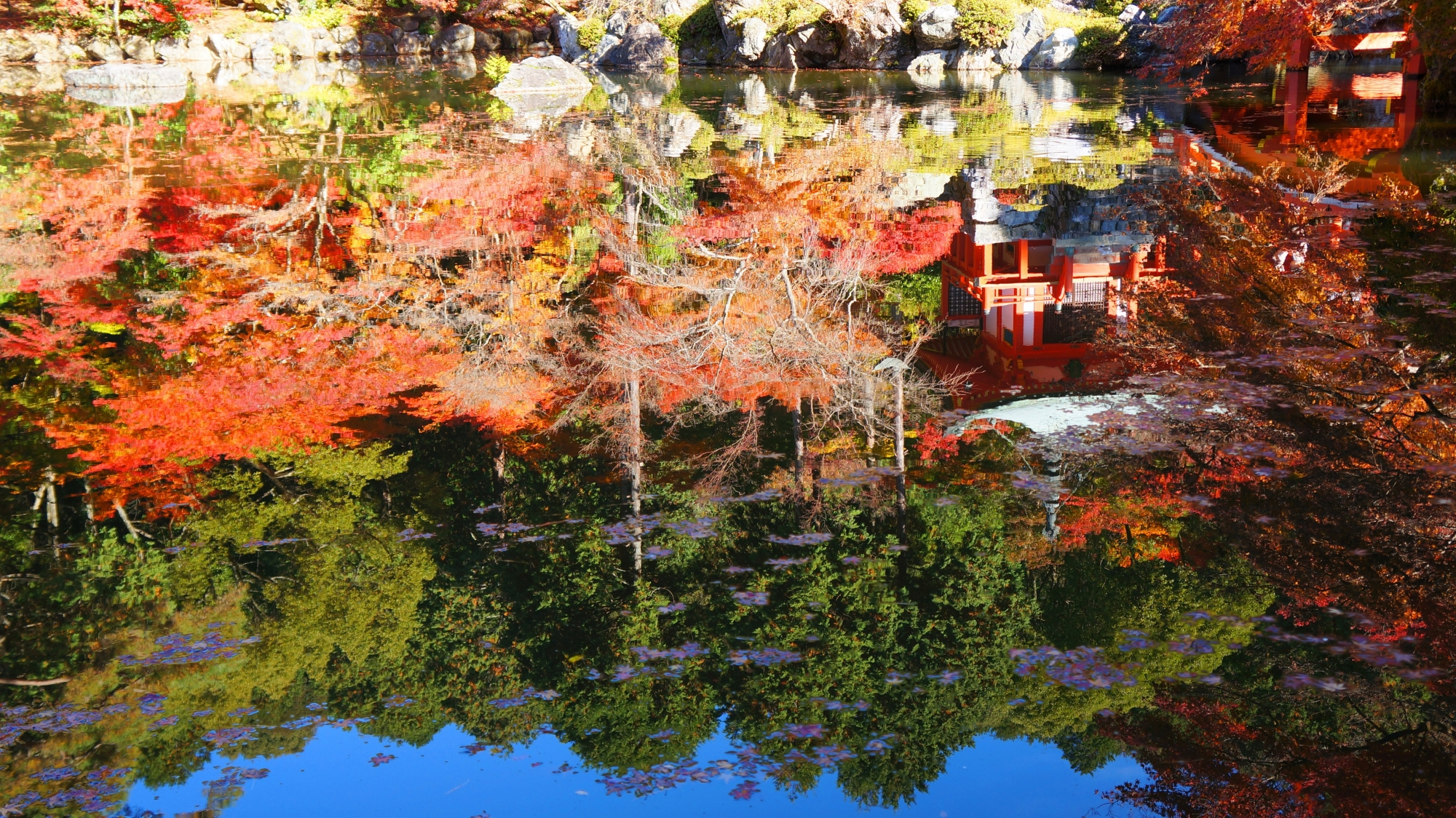 池に映る弁天堂や紅葉と青空や緑
