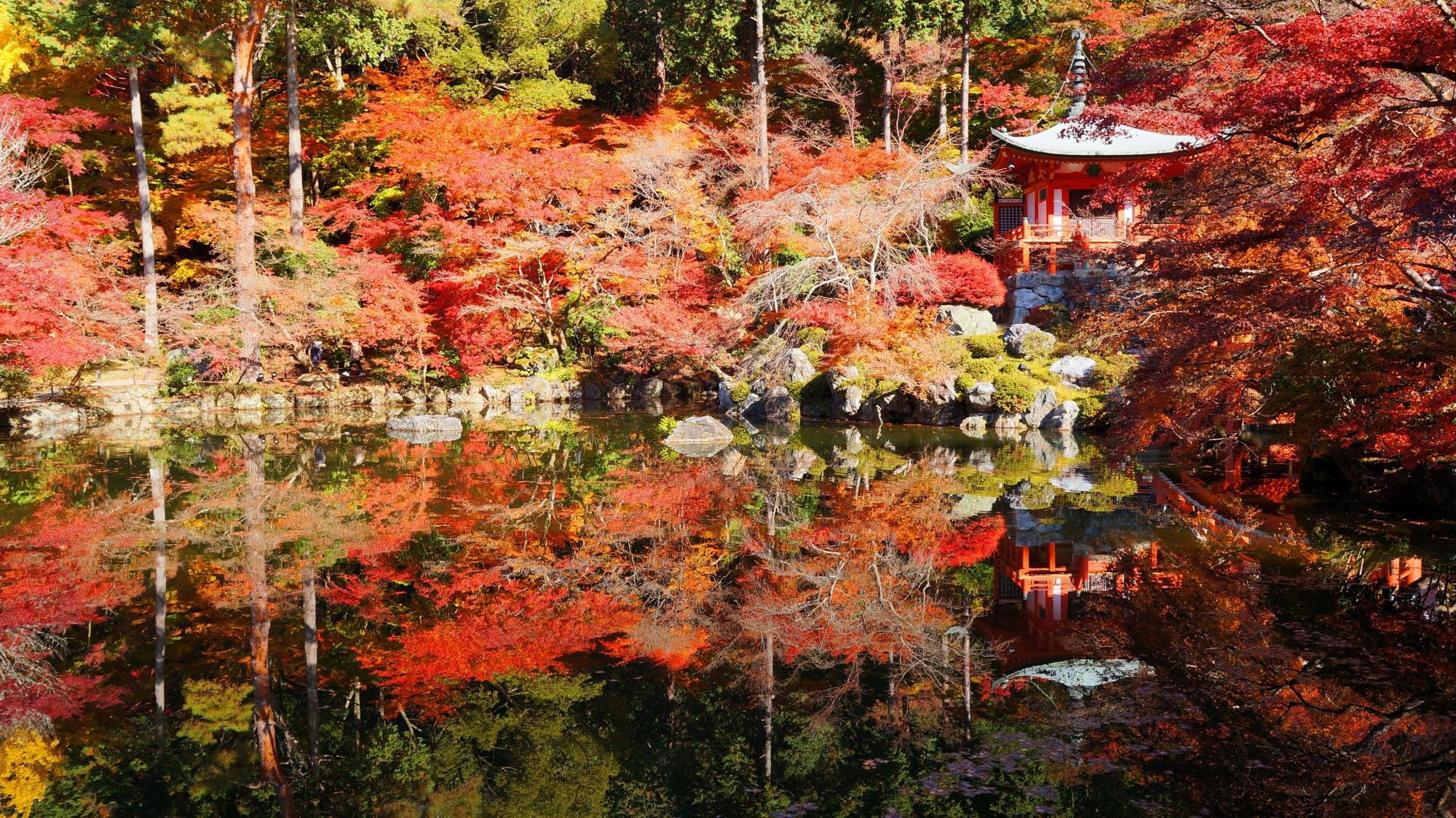 醍醐寺の美しすぎる絶品の紅葉の水鏡