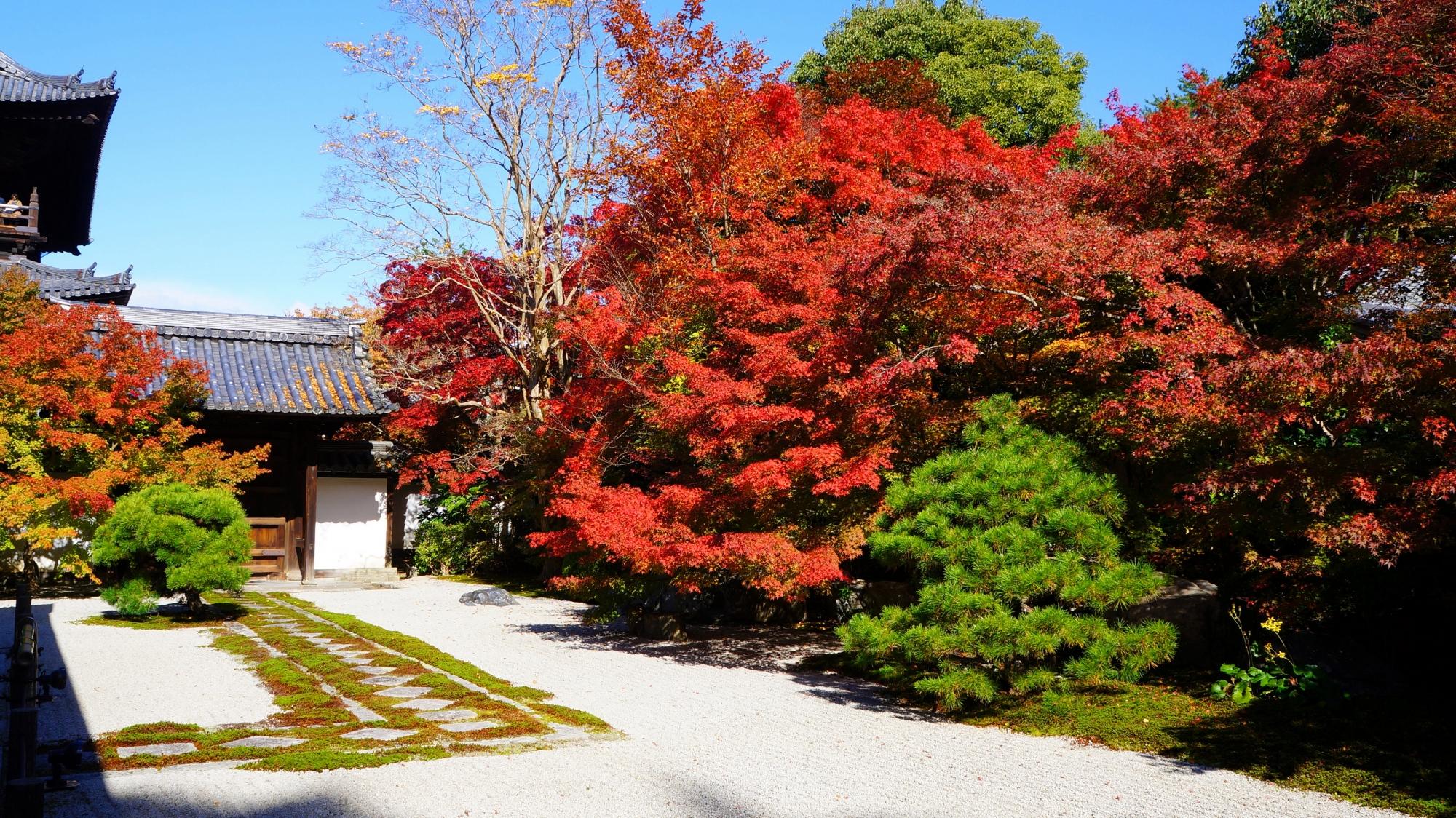 天授庵本堂前庭と真っ赤な紅葉
