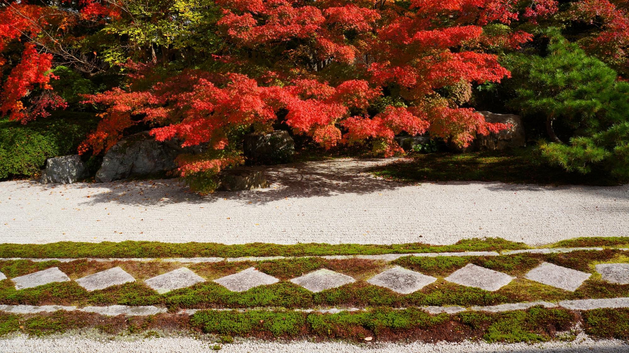 天授庵の紅葉と飛び石の絵になる秋の風景