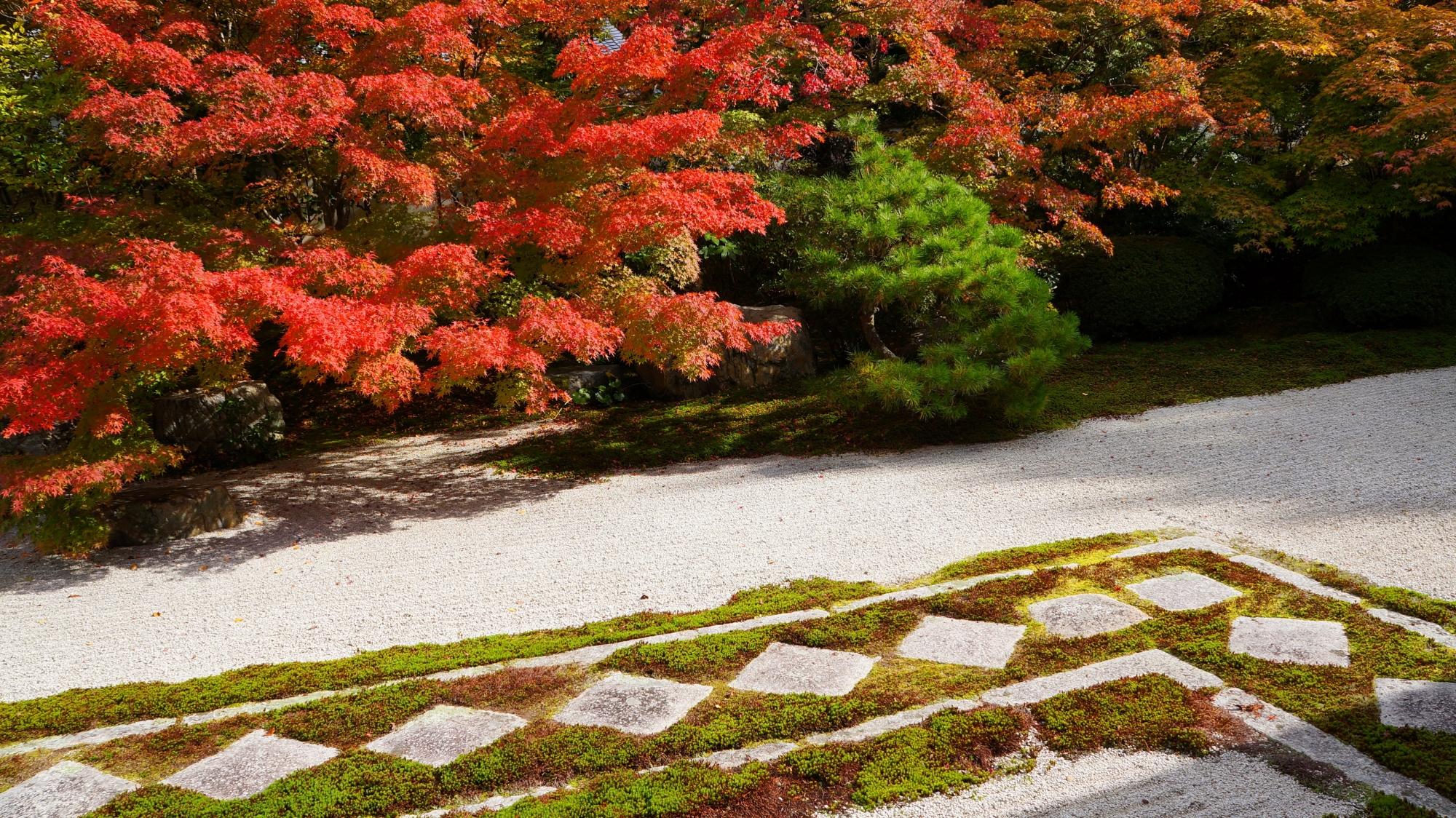 鮮やかな紅葉に彩られた菱形の飛び石の参道