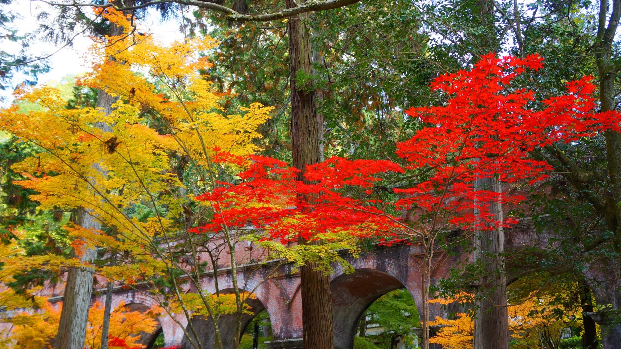 水路閣独特のレトロな紅葉