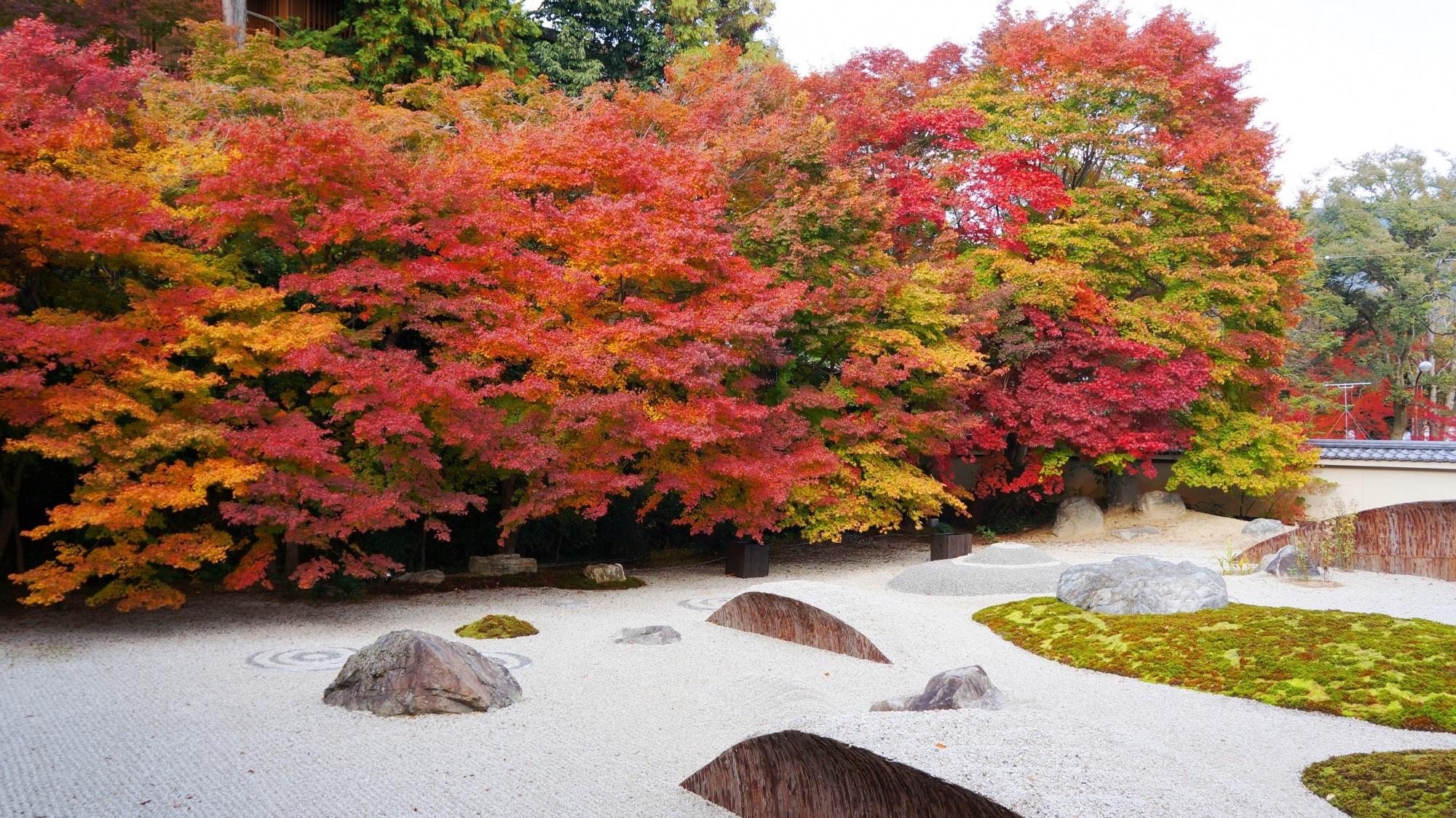 名刹の豪快で多彩な秋の彩り