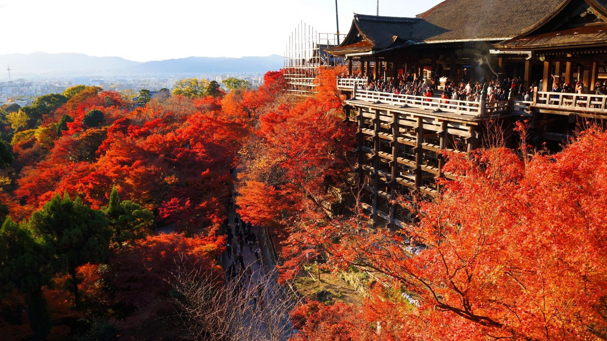 清水の舞台と燃える赤い紅葉