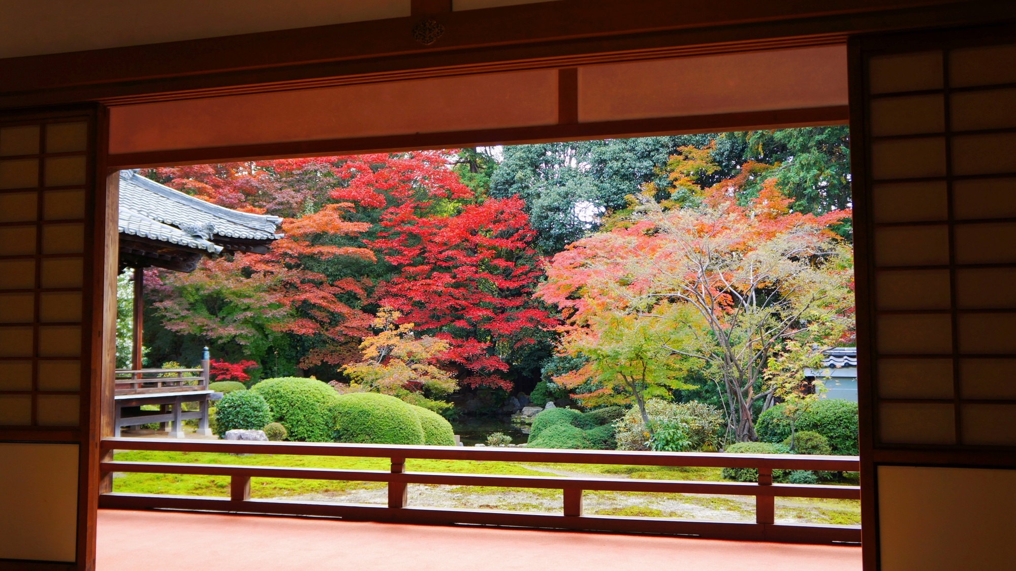 随心院の素晴らしい紅葉や秋色の情景