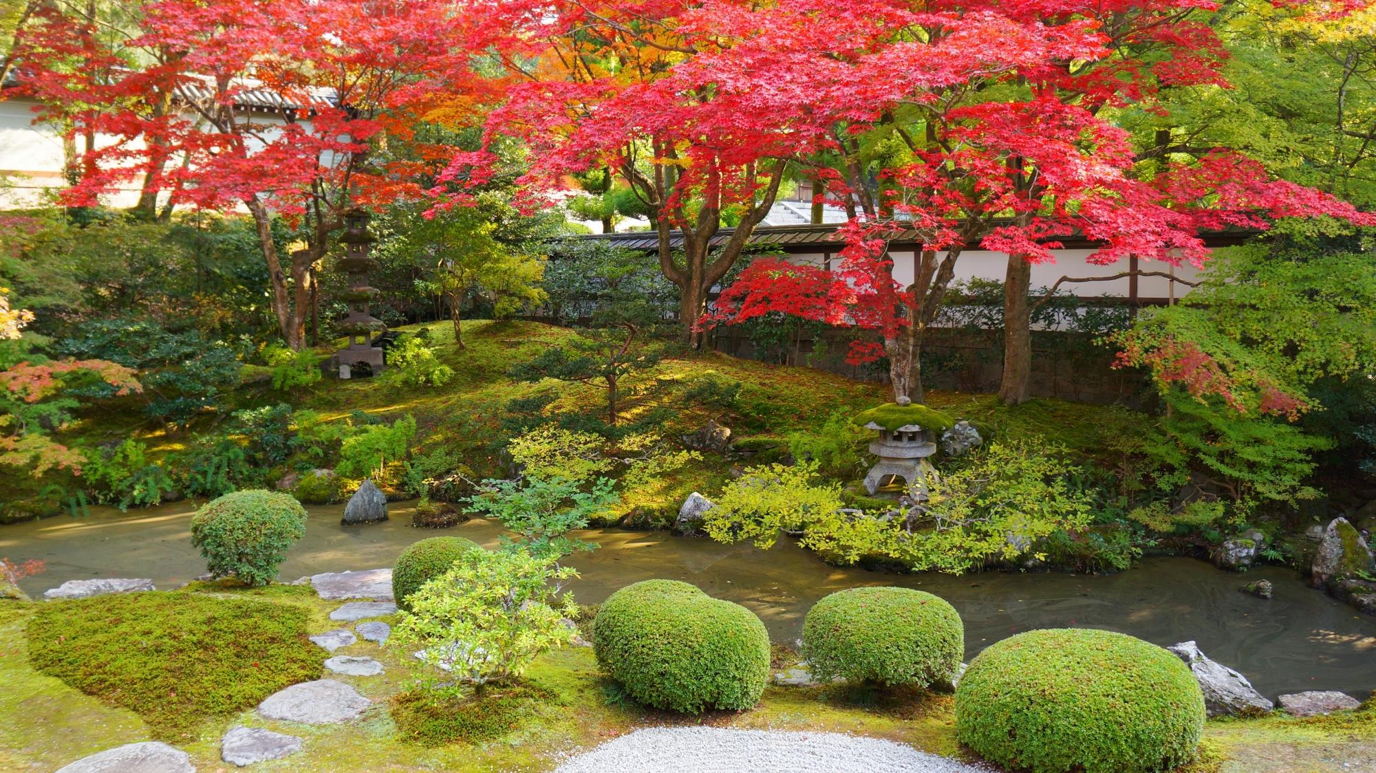 見事に紅葉する泉涌寺の御座所庭園