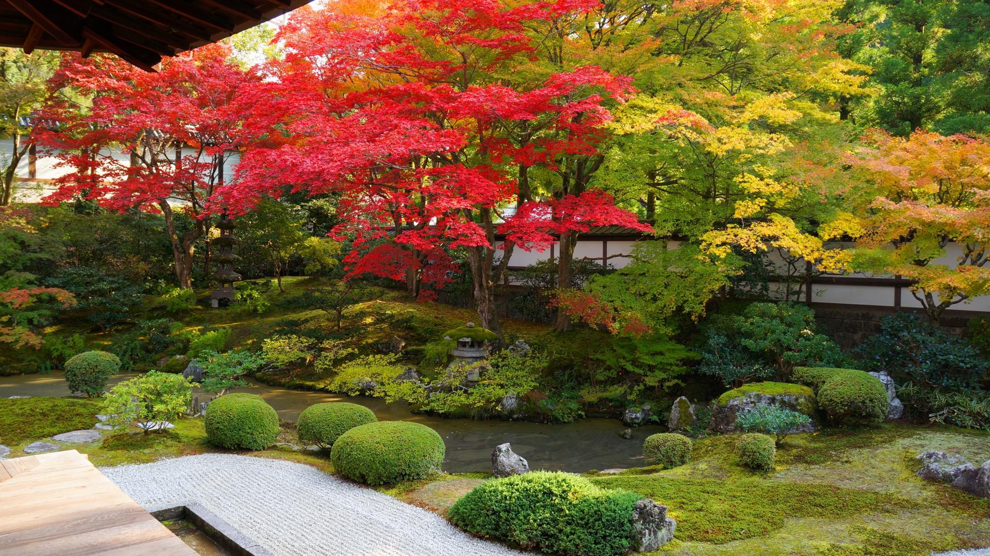 優雅で風情もある見事な紅葉の庭園