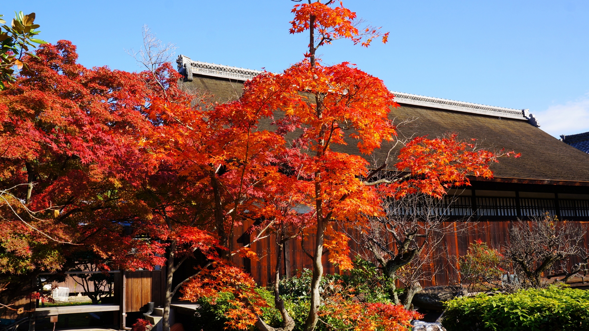 勧修寺の書院と紅葉