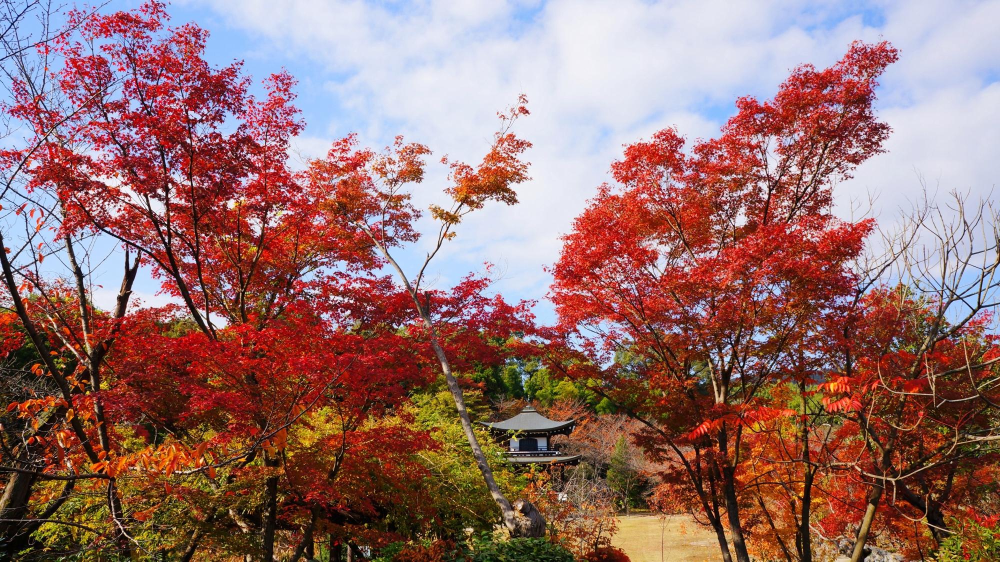 遠目から眺めた観音堂と紅葉