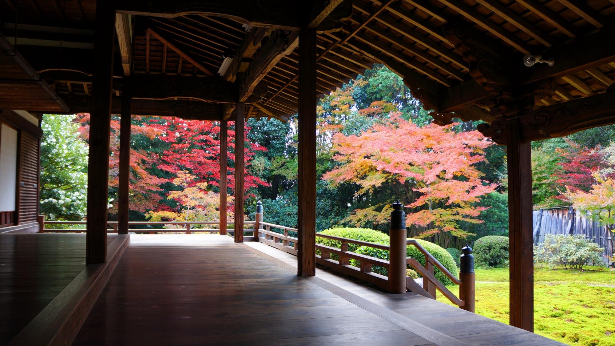 隨心院の本堂と紅葉