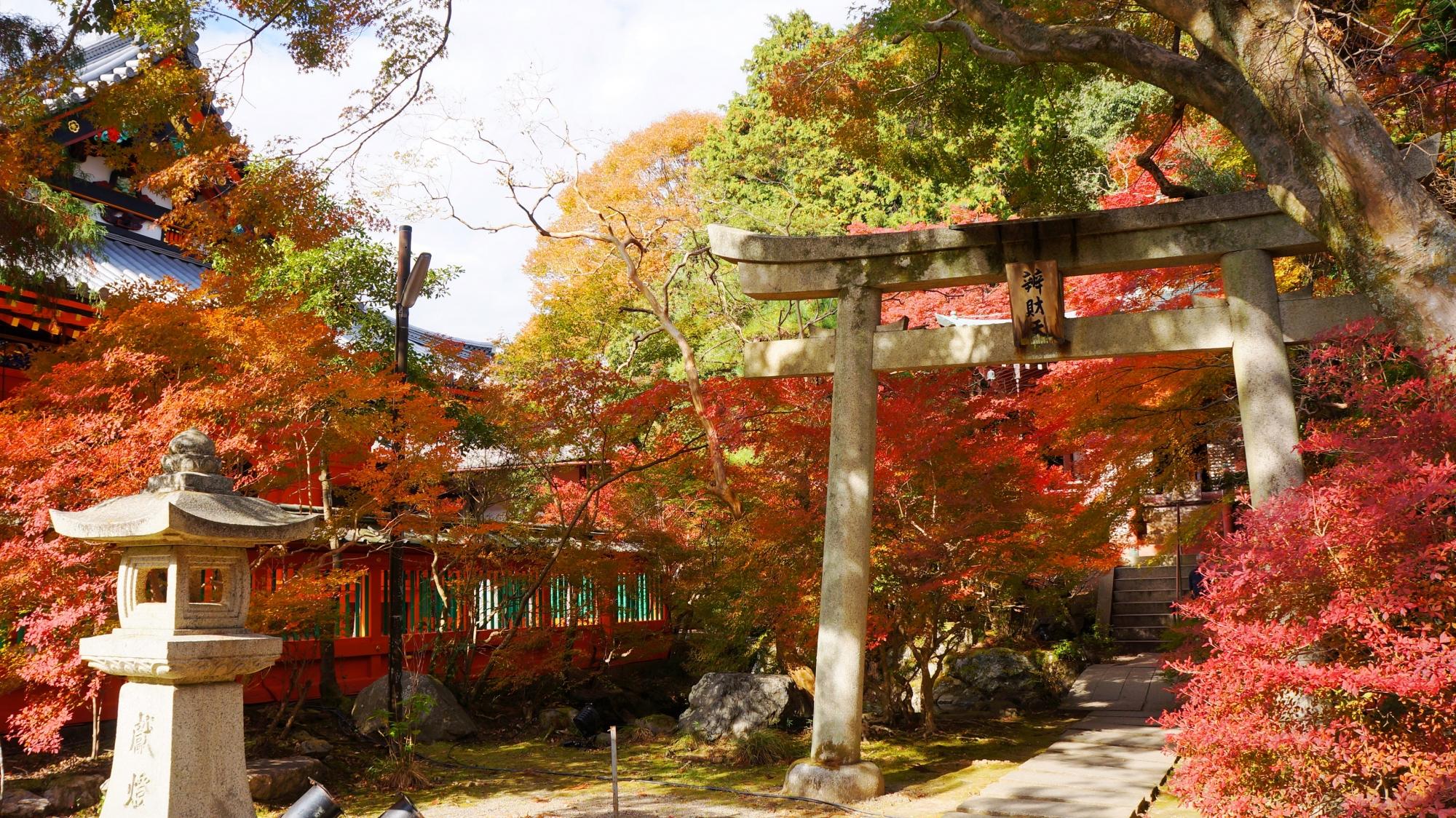 秋色につつまれた毘沙門堂の高台弁才天(弁天堂)と付近の紅葉