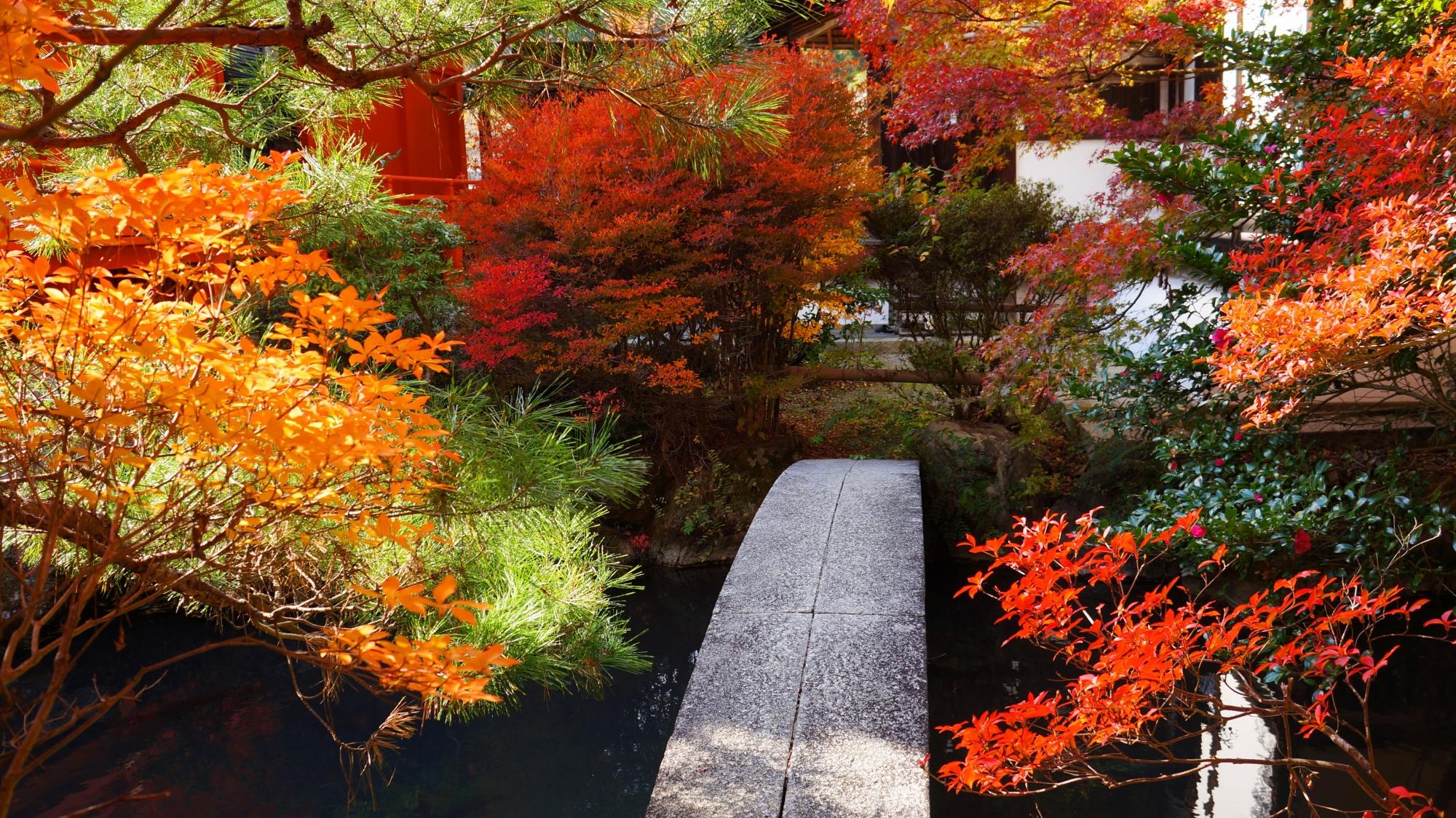 石橋を彩る風情ある紅葉と色づくツツジ