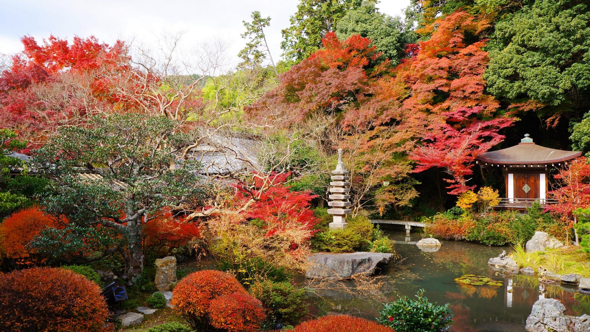 高画質 晩翠園 紅葉 画像