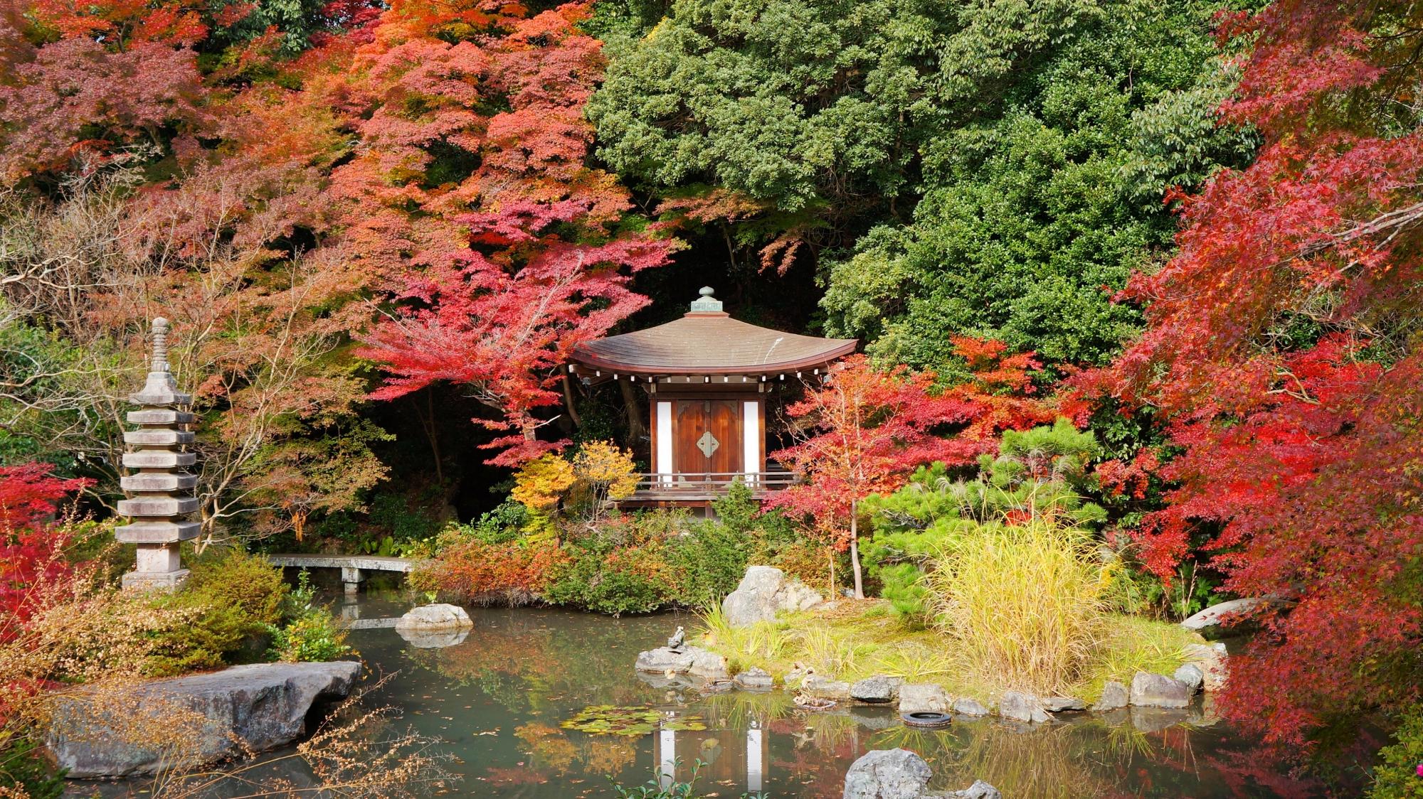 毘沙門堂の晩翠園の紅葉