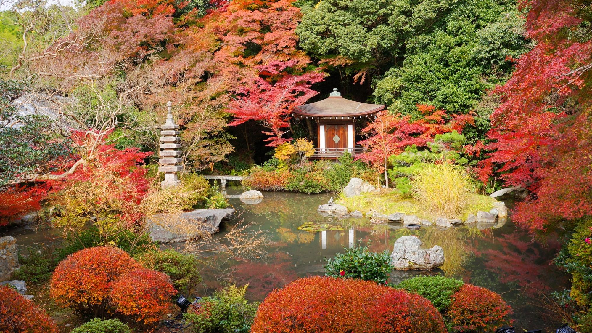 毘沙門堂の素晴らしい紅葉と華やかな秋