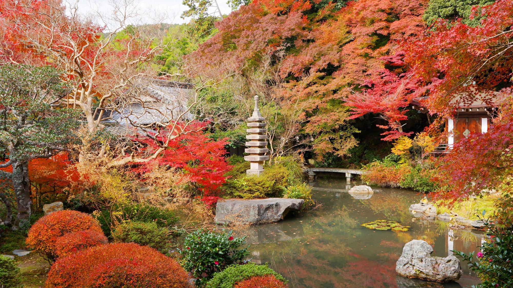 毘沙門堂の見事な秋色の競演
