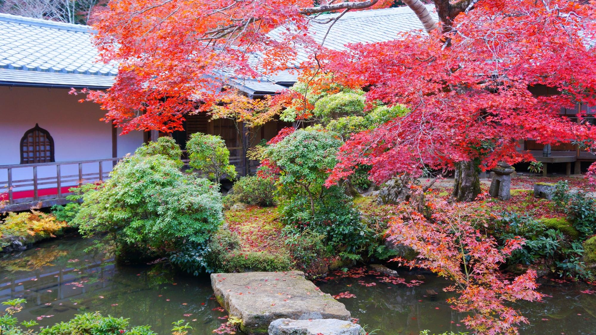 風情ある水辺を染める赤い紅葉