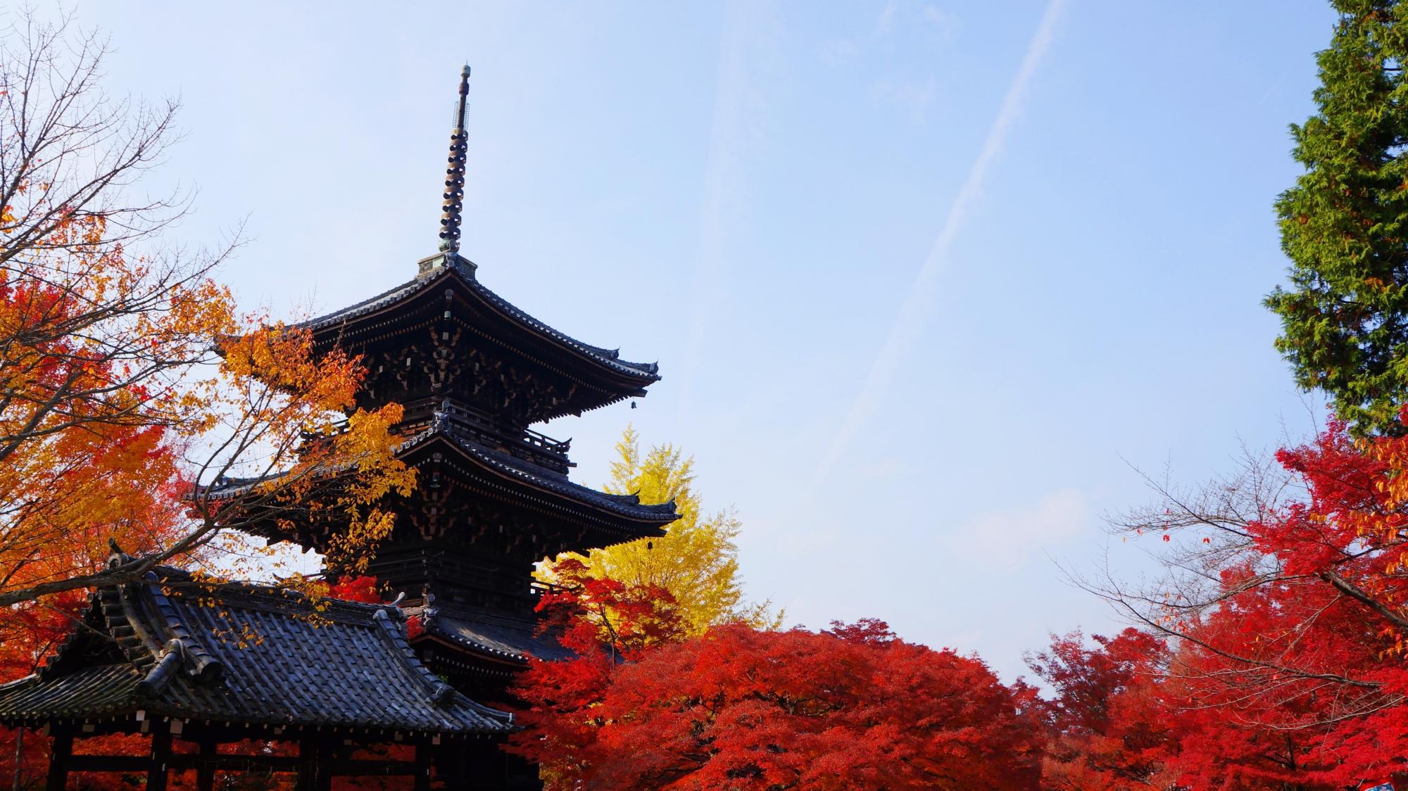 三重塔と燃えるような真っ赤な紅葉