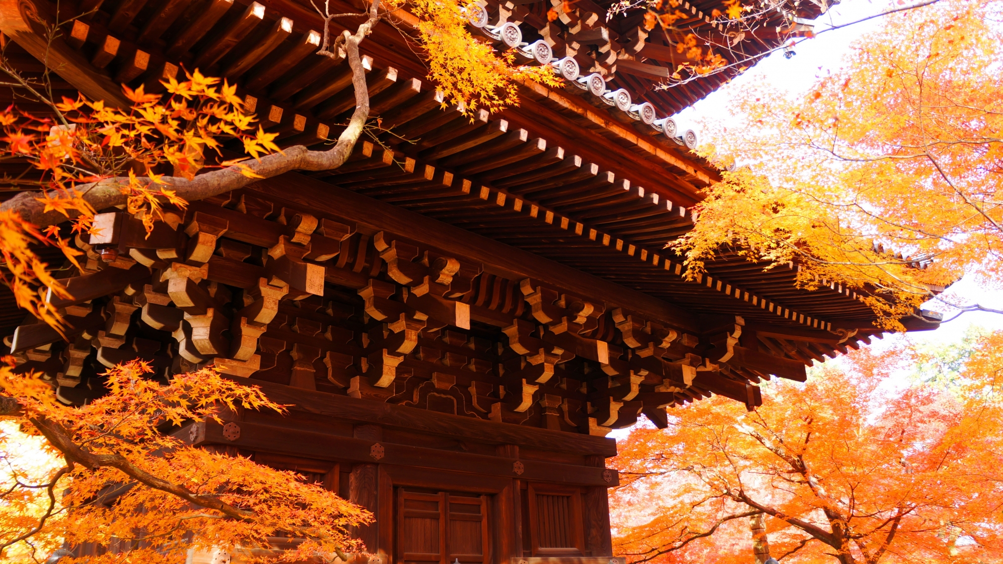 三重塔をつつむ淡い秋色の世界